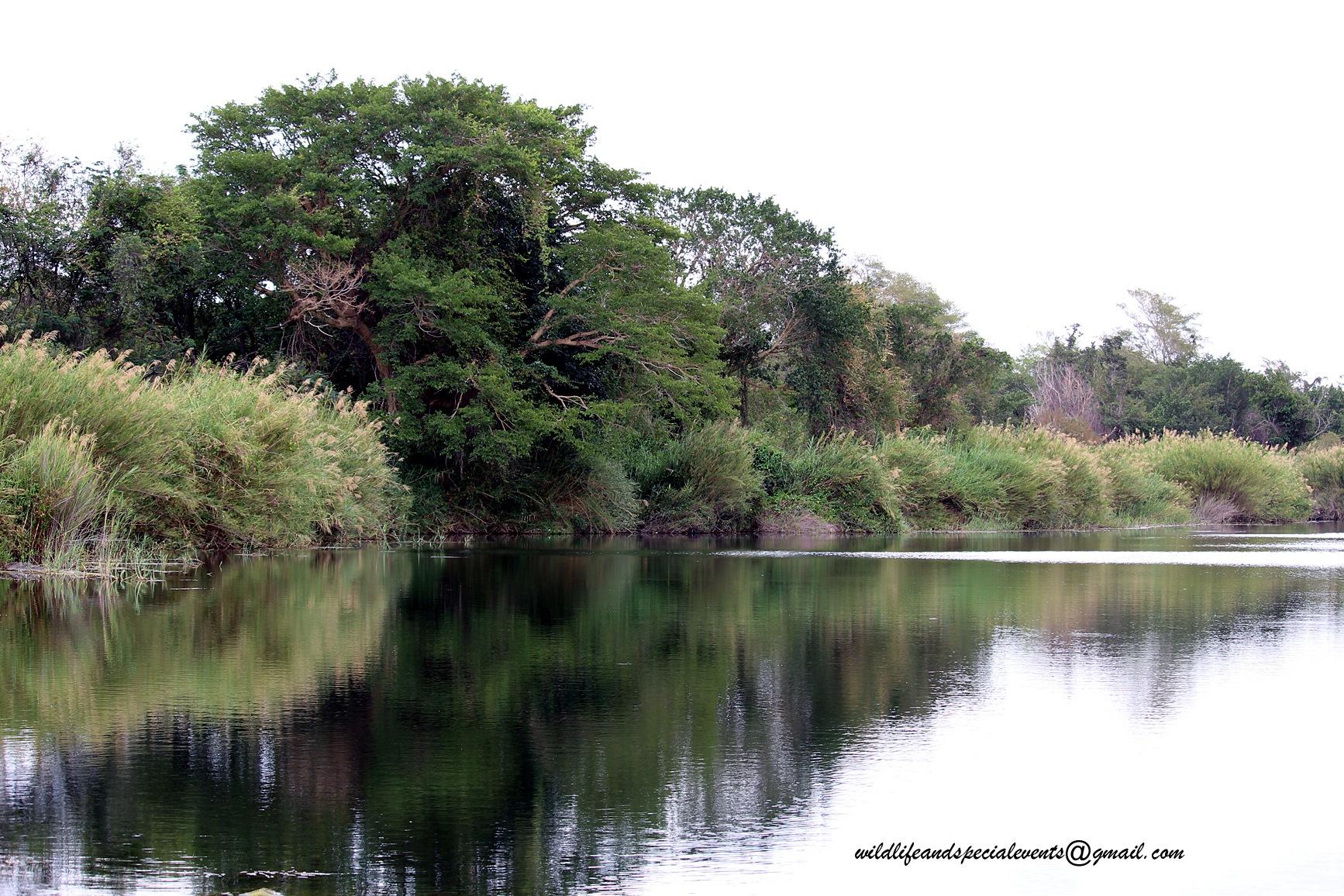 Riverside by oosie