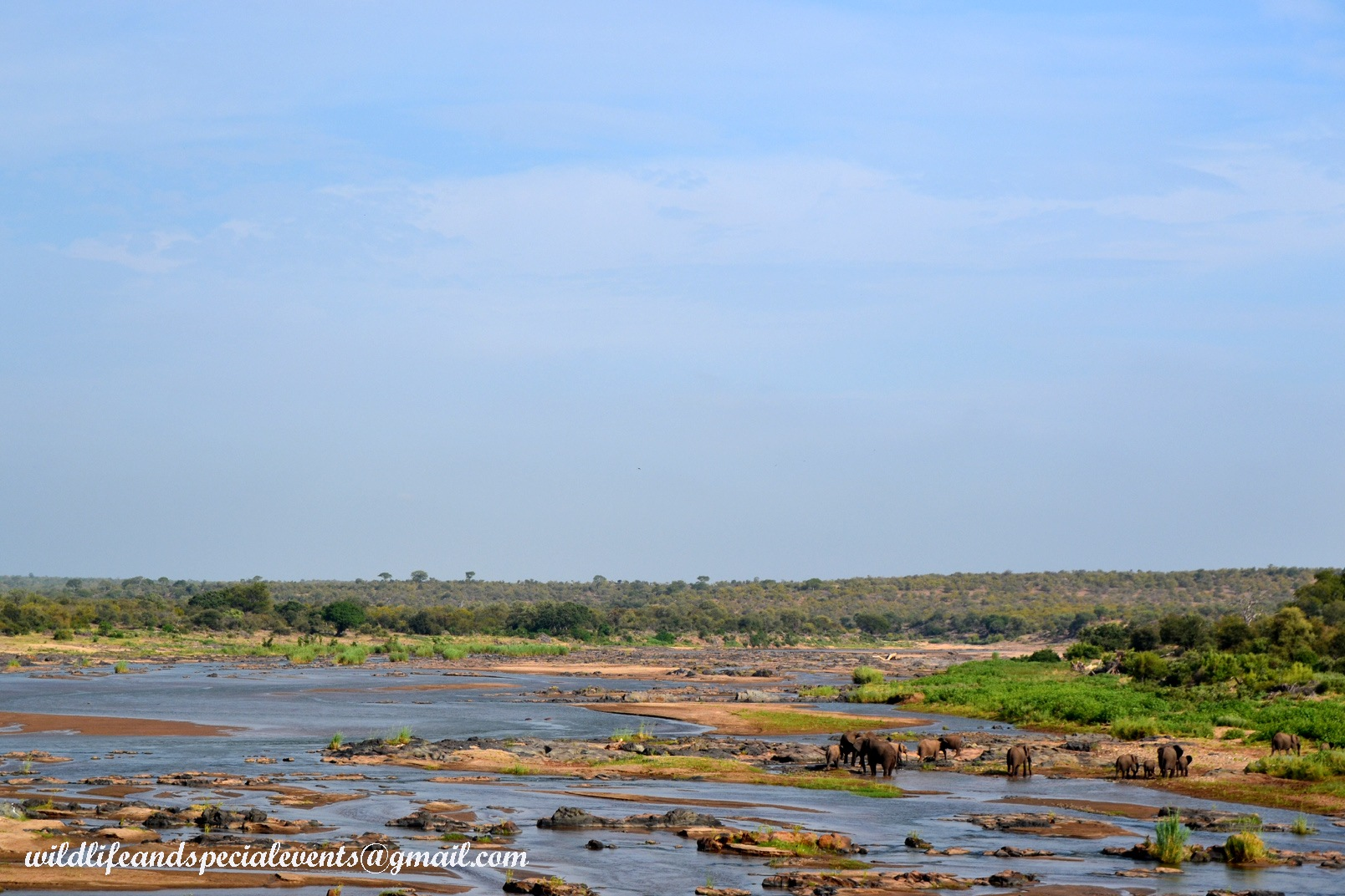My African landscape by oosie