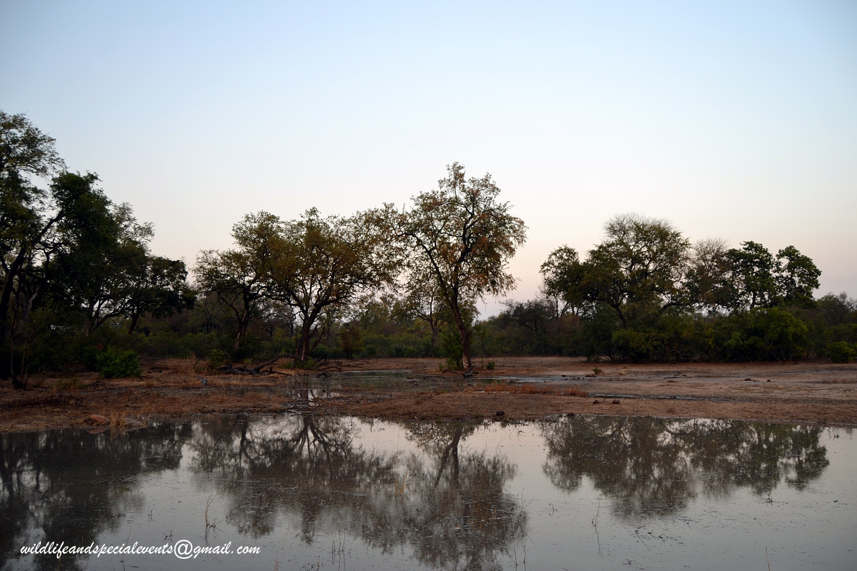 African landscape reflection by oosie