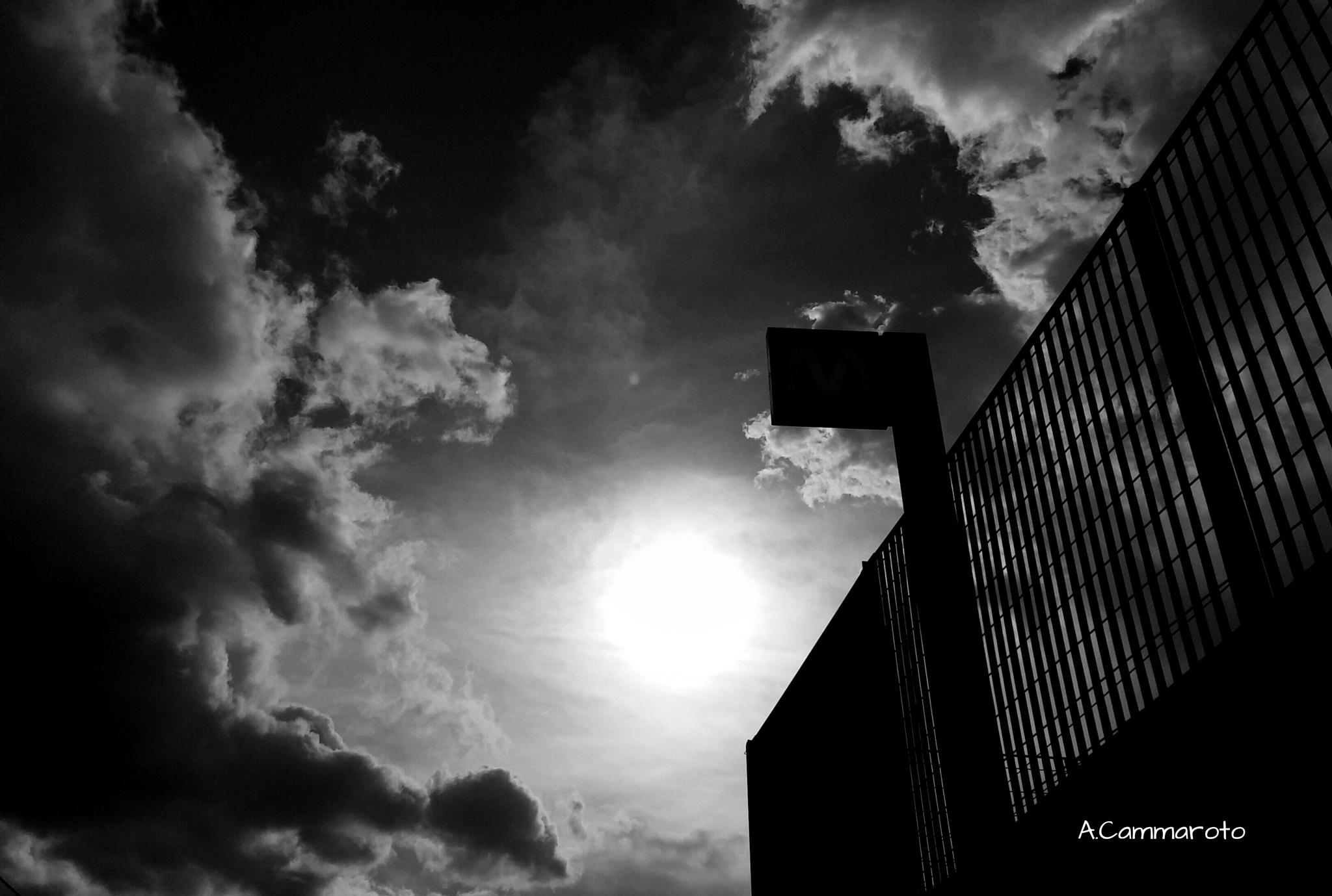 black /White  by antonio.cammaroto.64