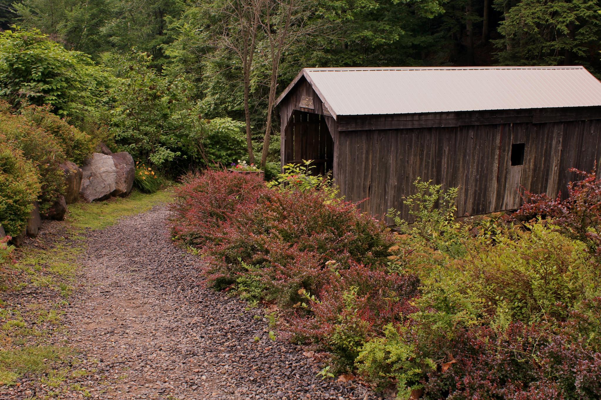 Copeland Covered Bridge~ by debbie.lamontesnyder