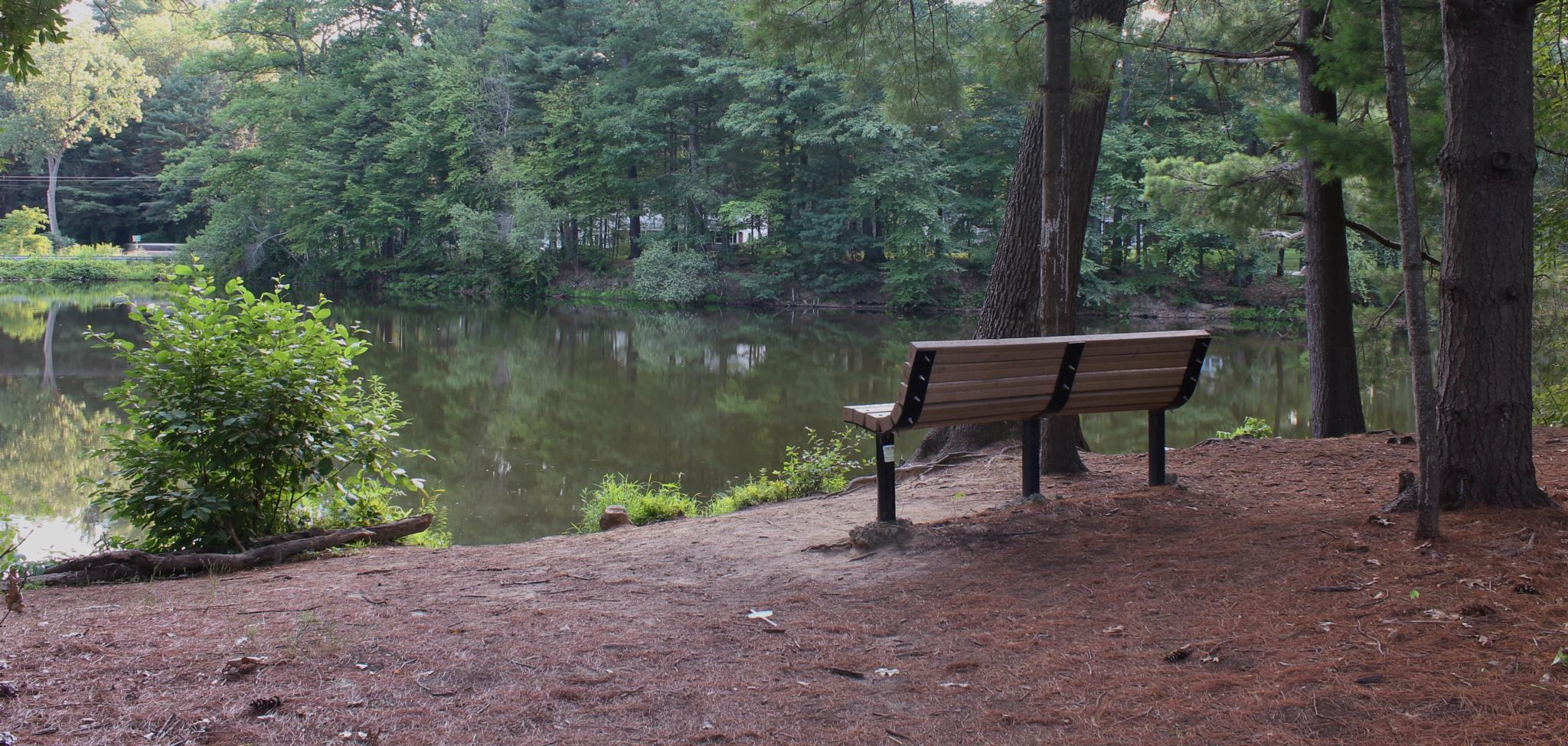 Relaxing at the Pond by debbie.lamontesnyder