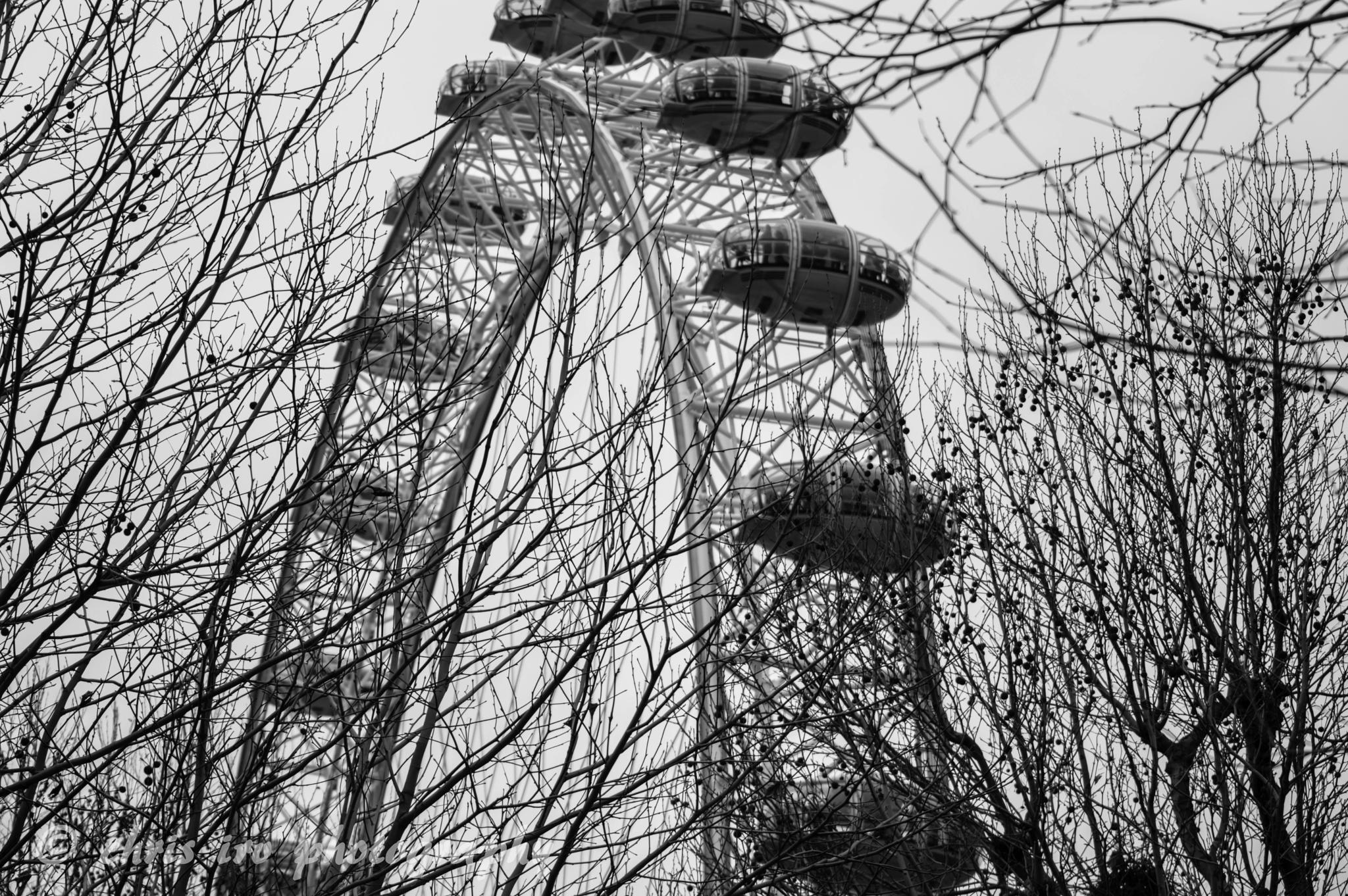 Photo in Abstract #london eye #black and white #london
