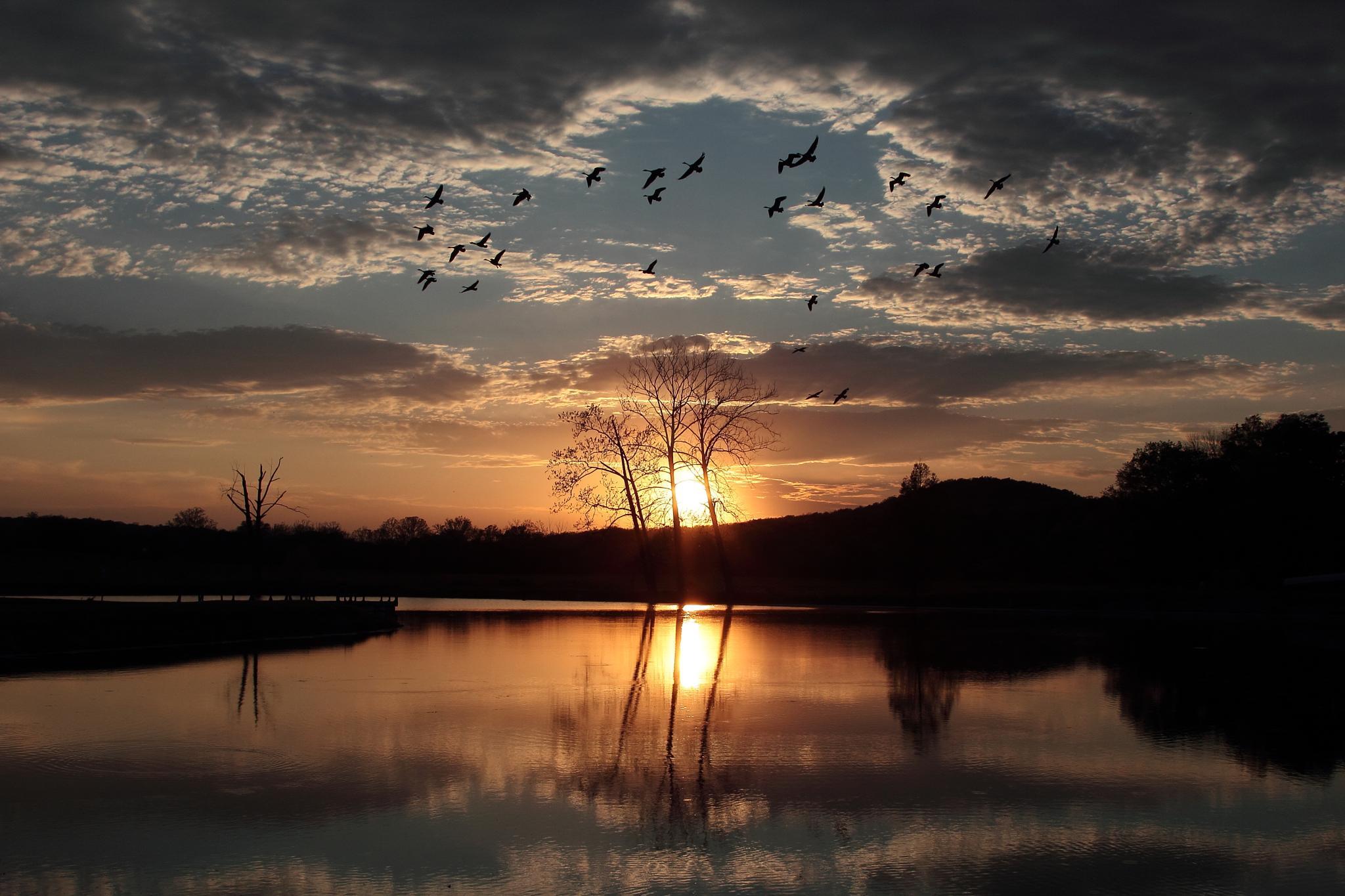 "Sunset Southeast Missouri USA 5/2/2015 (""Spring Flight"") by kent.nelson.927"