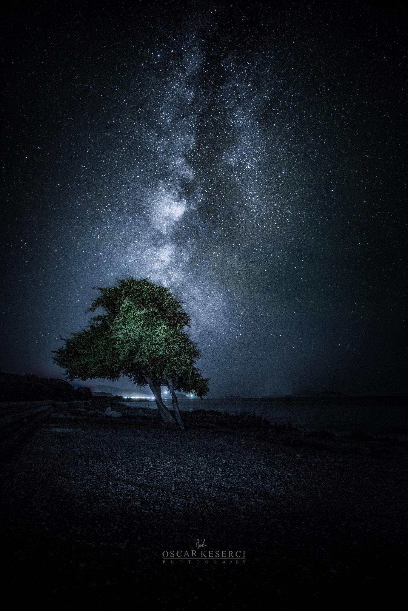 Galactic tree by oscar keserci