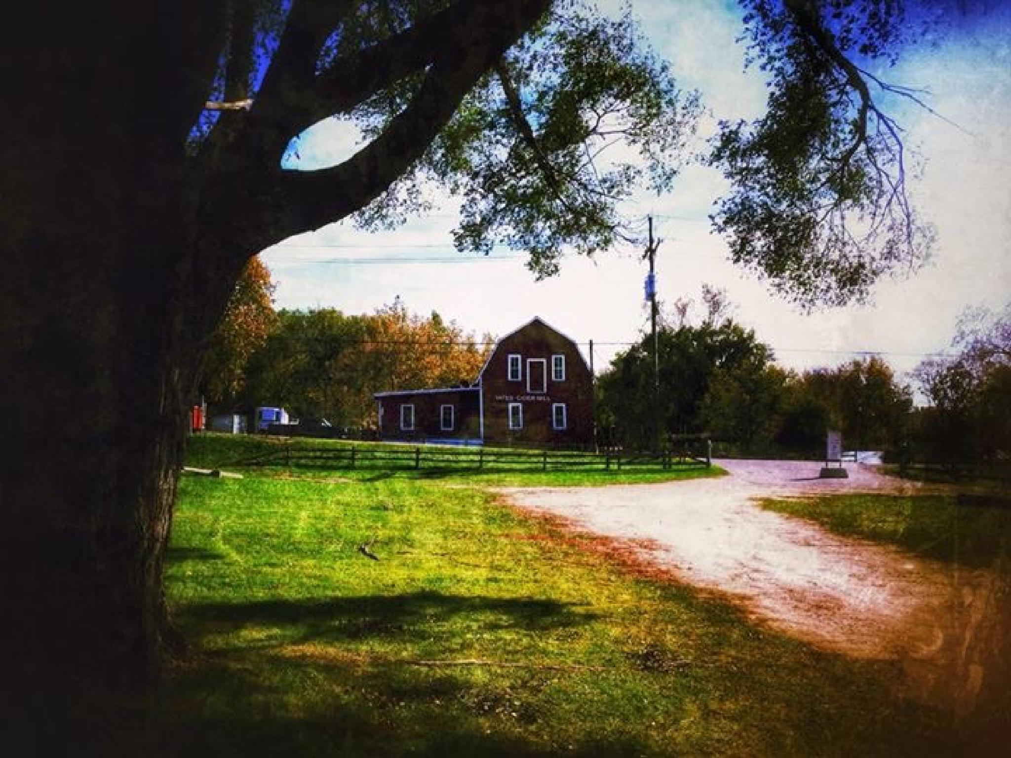 Yates Park by Jim Richardson