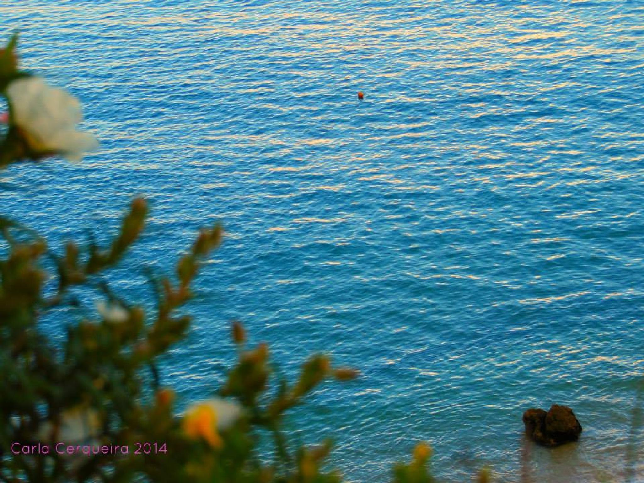 Untitled by portugalphotografia