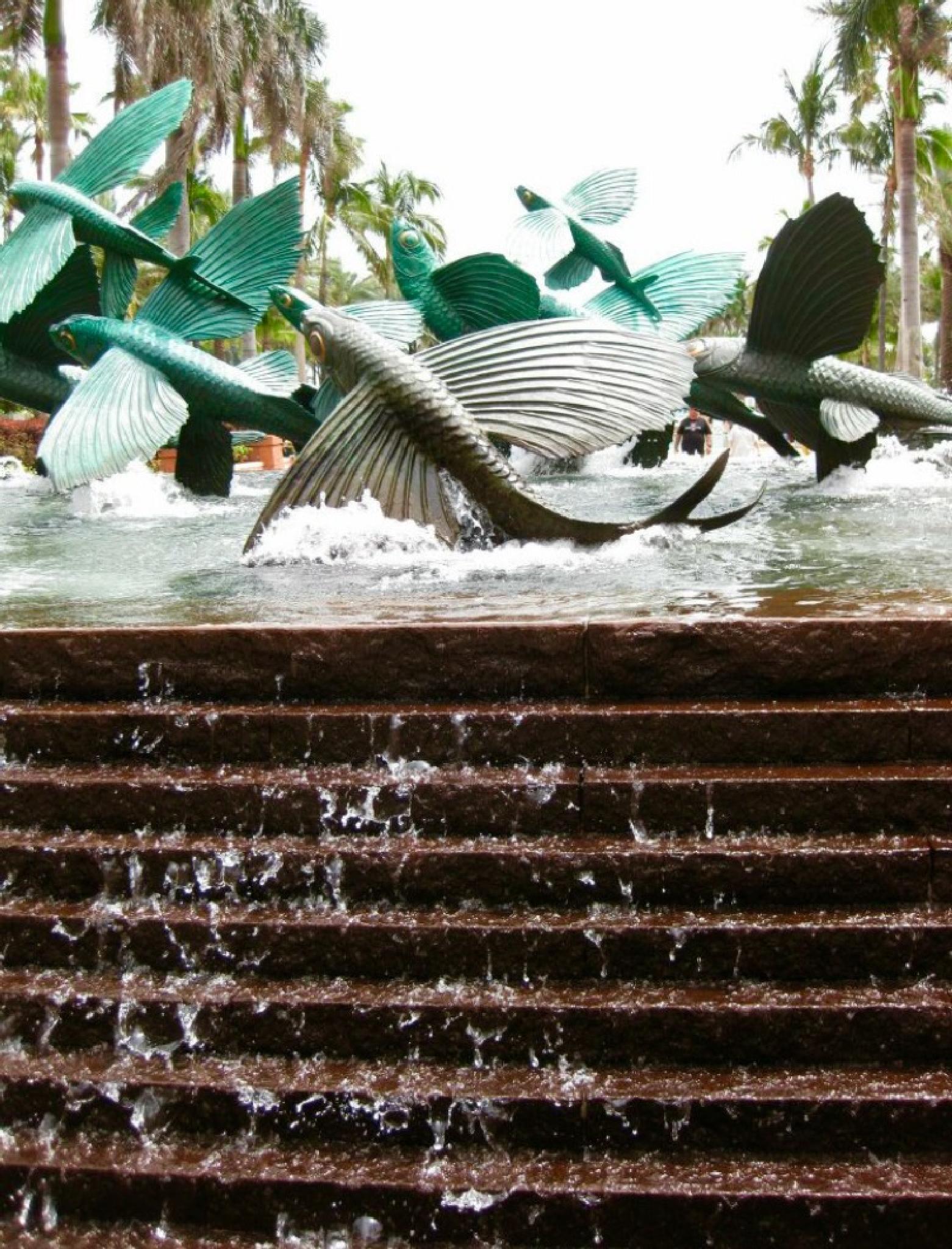 Photo in Travel #fountain #fish #atlantis #bahamas #water