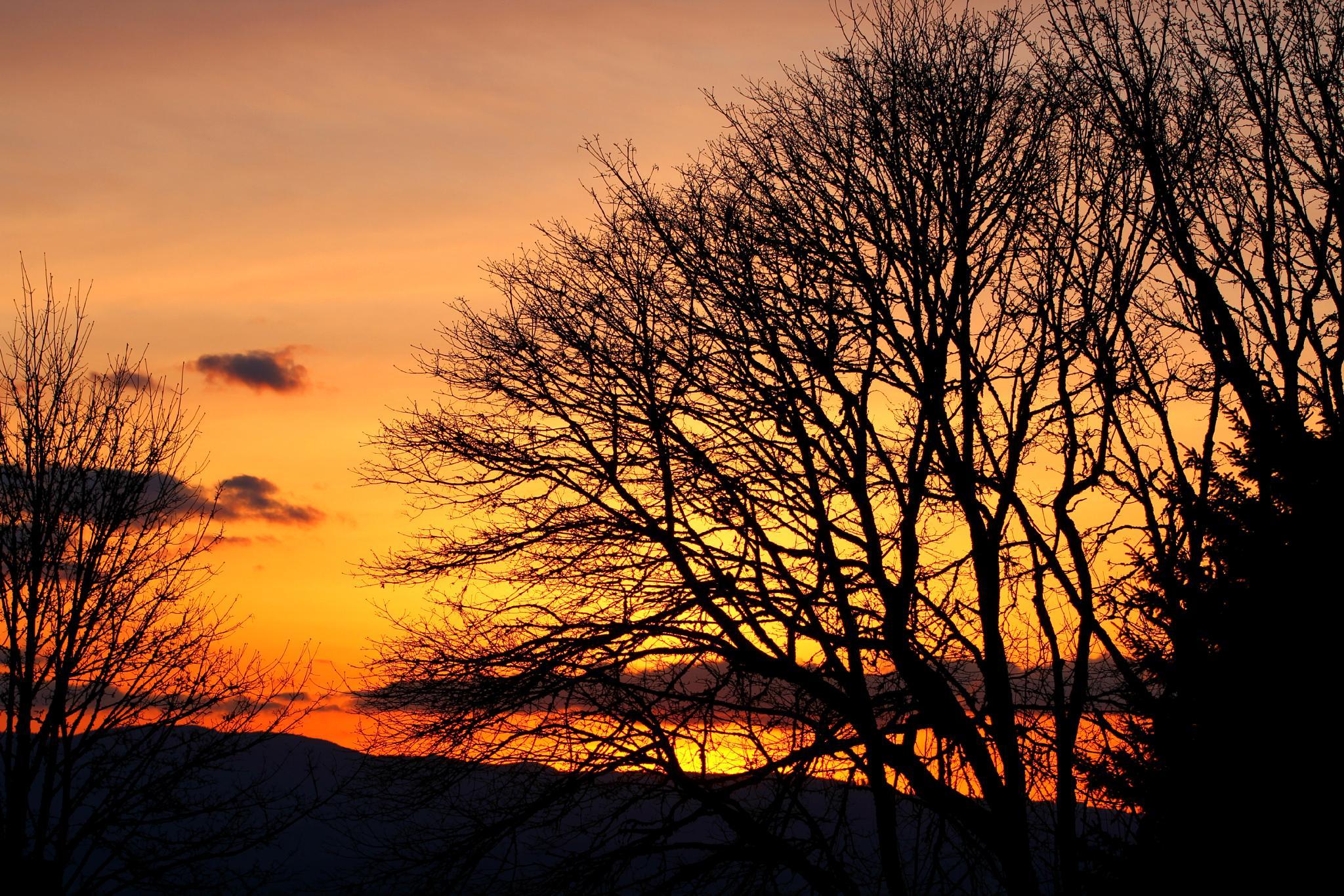 Oregon sunset by dennis.glisson