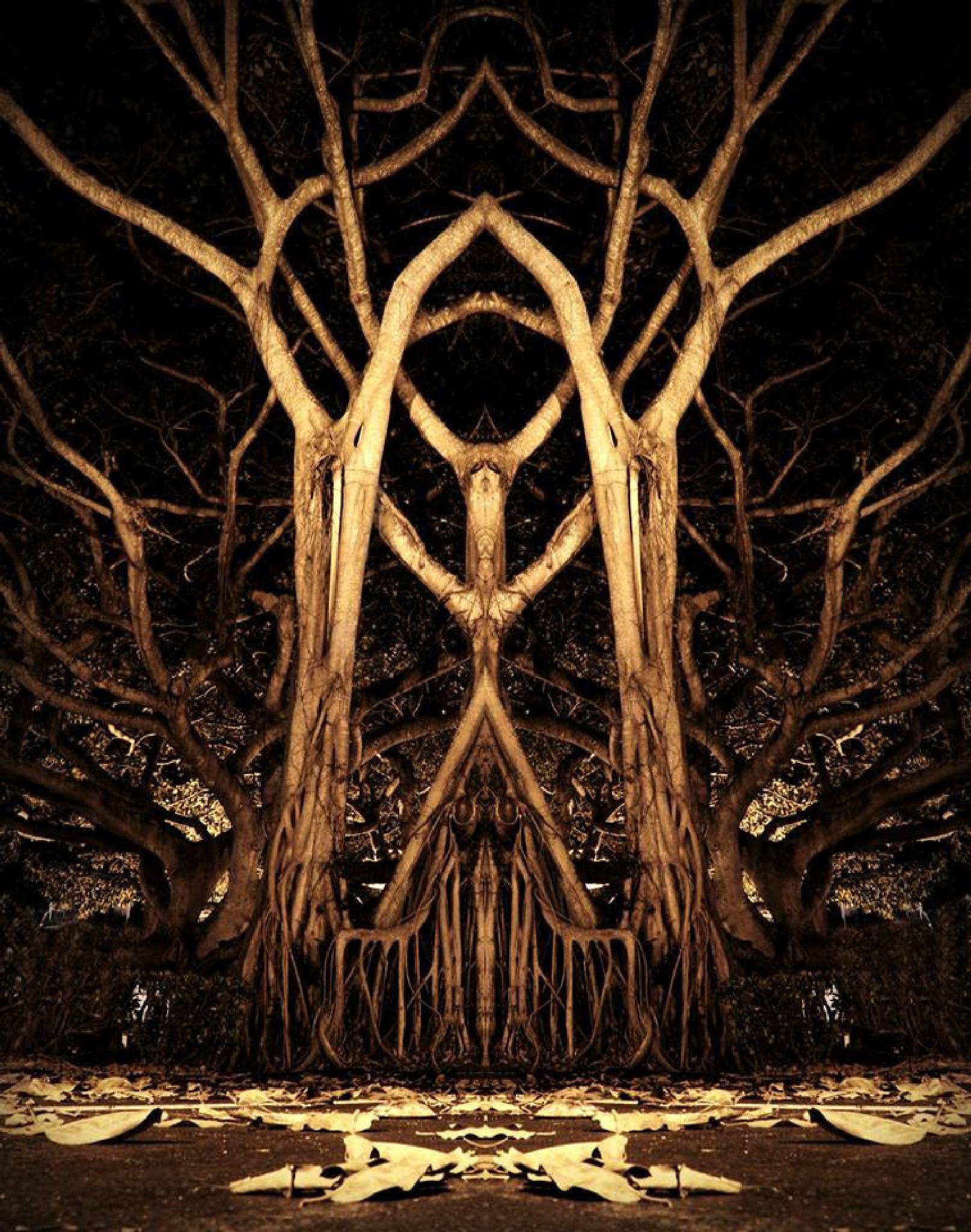 Evil tree by dennis.glisson