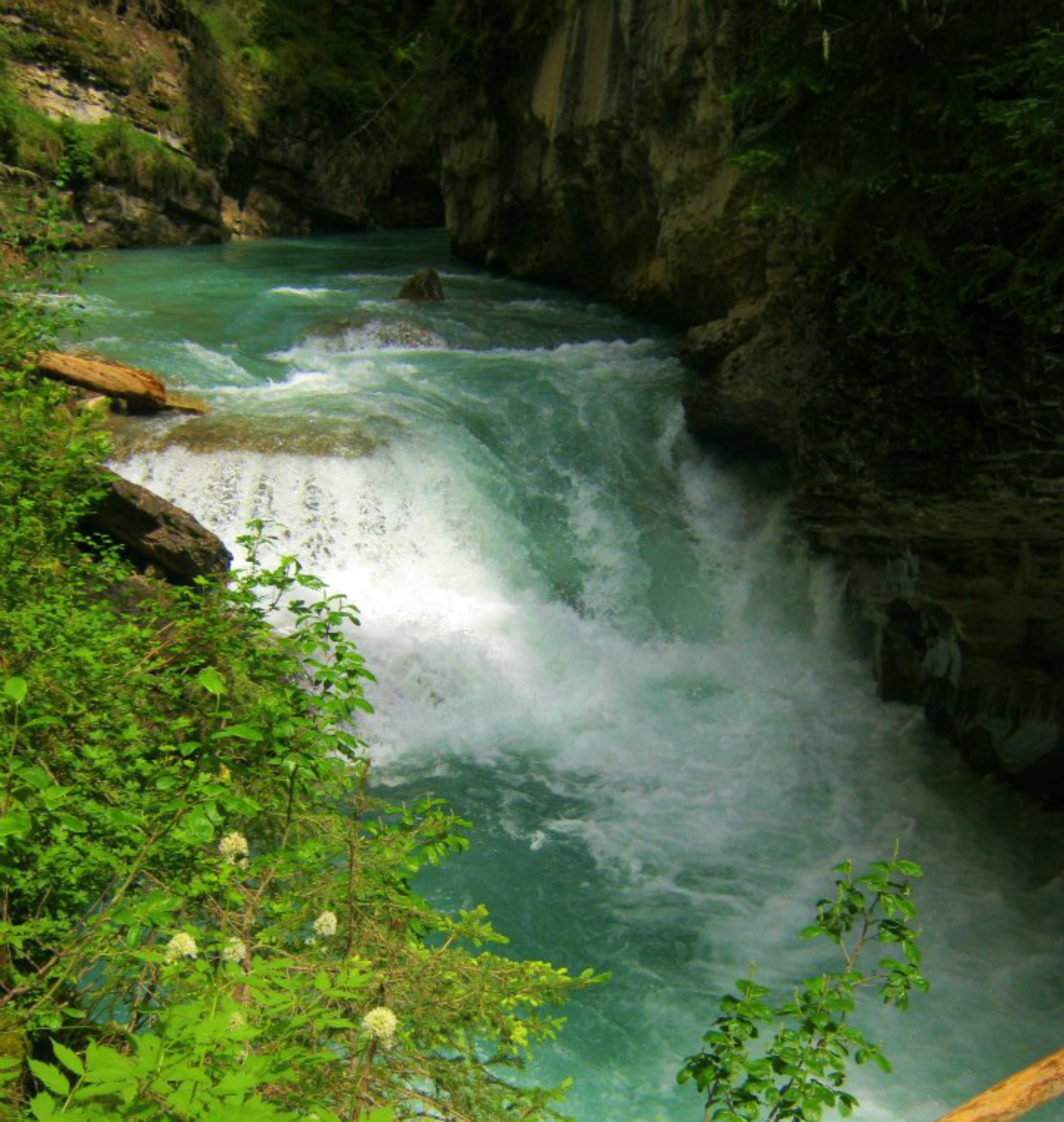 A peek into the Canadian Rockies by alie
