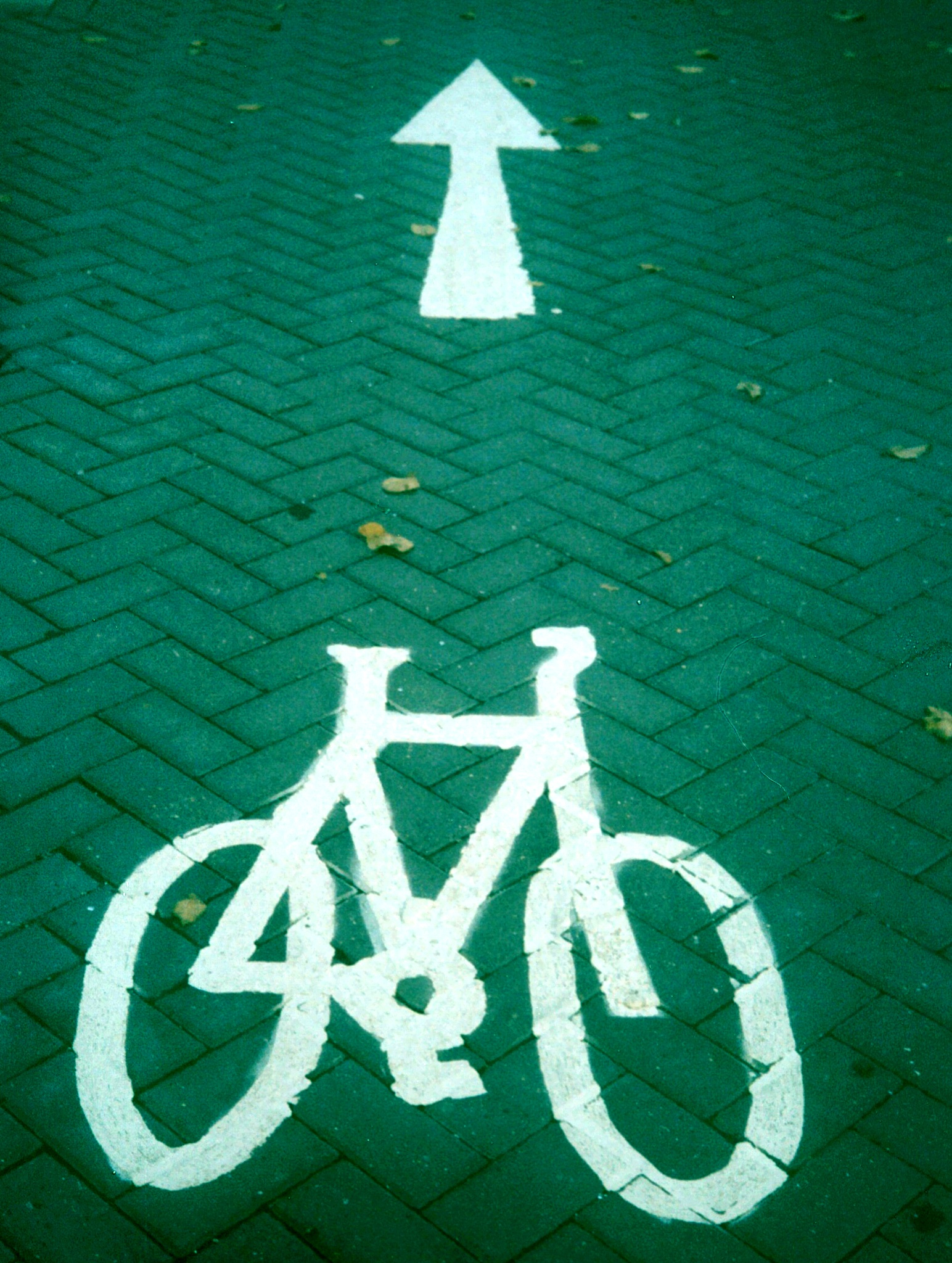 Cycle lane  by Scott Steele-Green