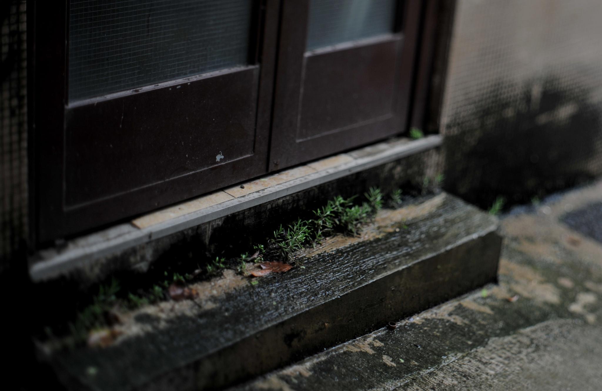 ...在 祥興工業大廈, 堅尼地城, 香港..安妮·萊柏維茲 <<女性 : 新影像>> 展覽會... by cyccanhk