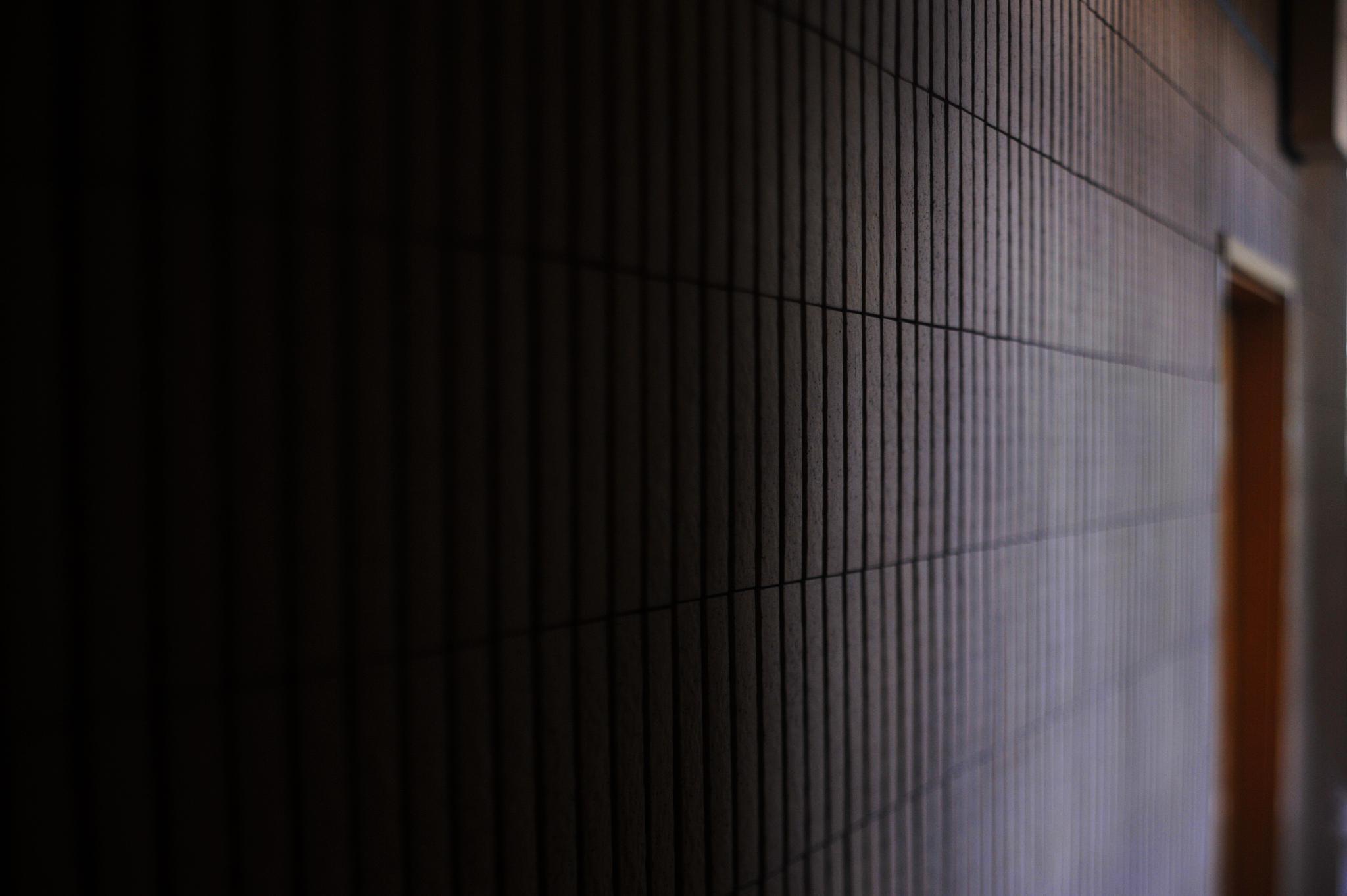 ...the door... by cyccanhk