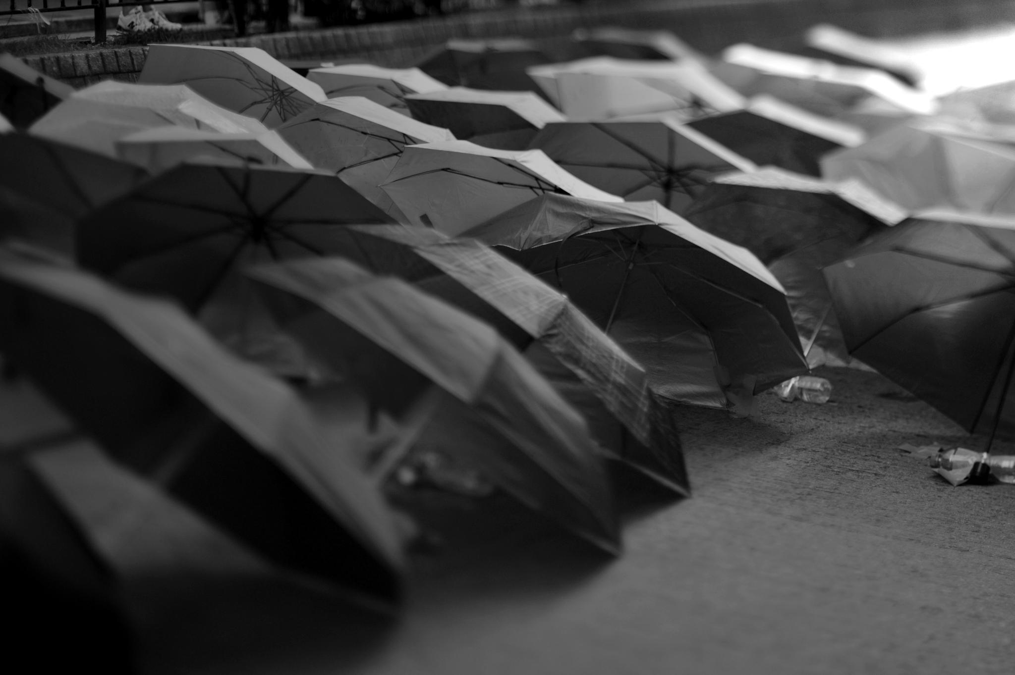 ...umbrellas (against the tear gas)... by cyccanhk