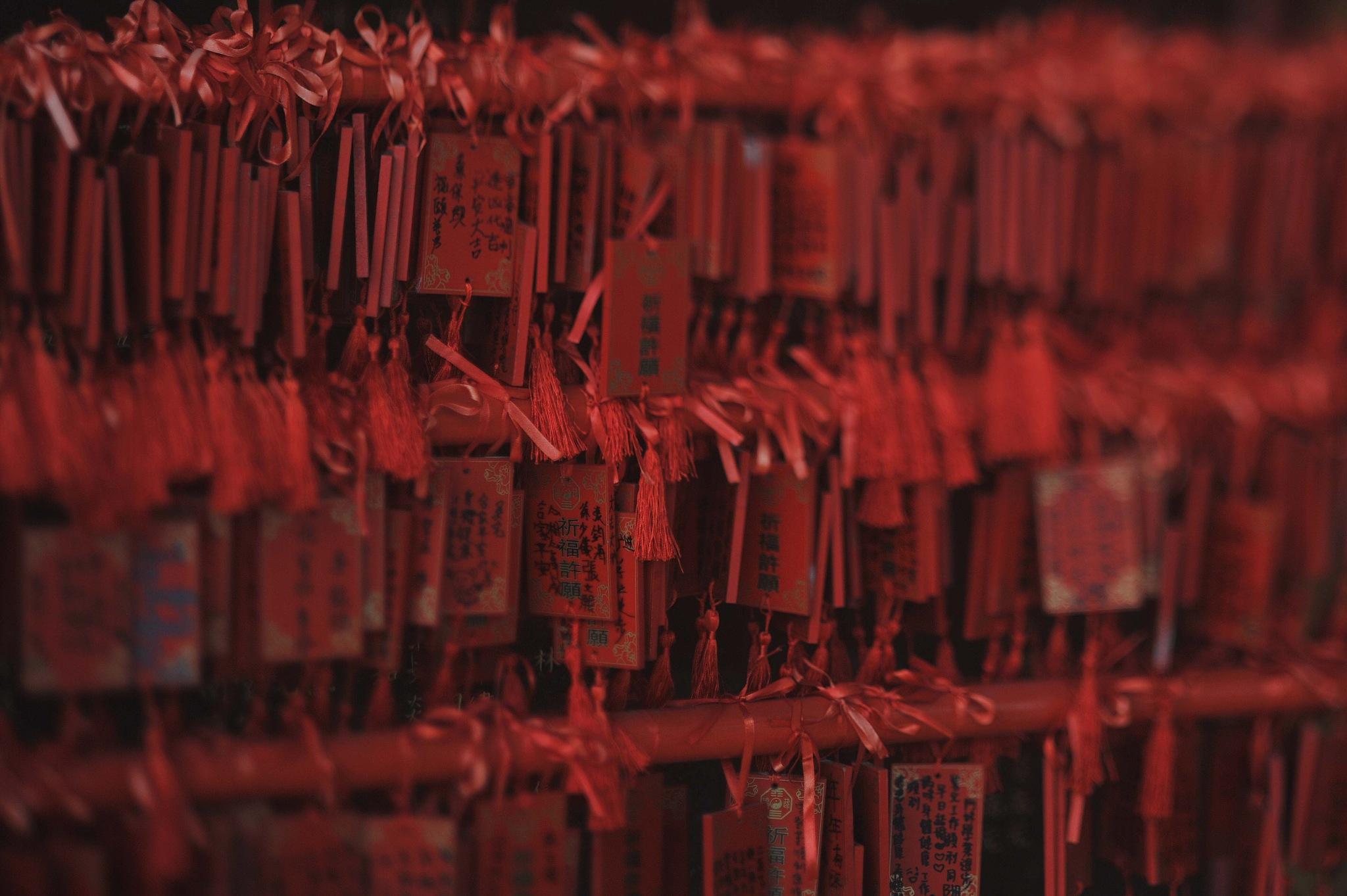 ...at Fung Ying Seen Koon... by cyccanhk