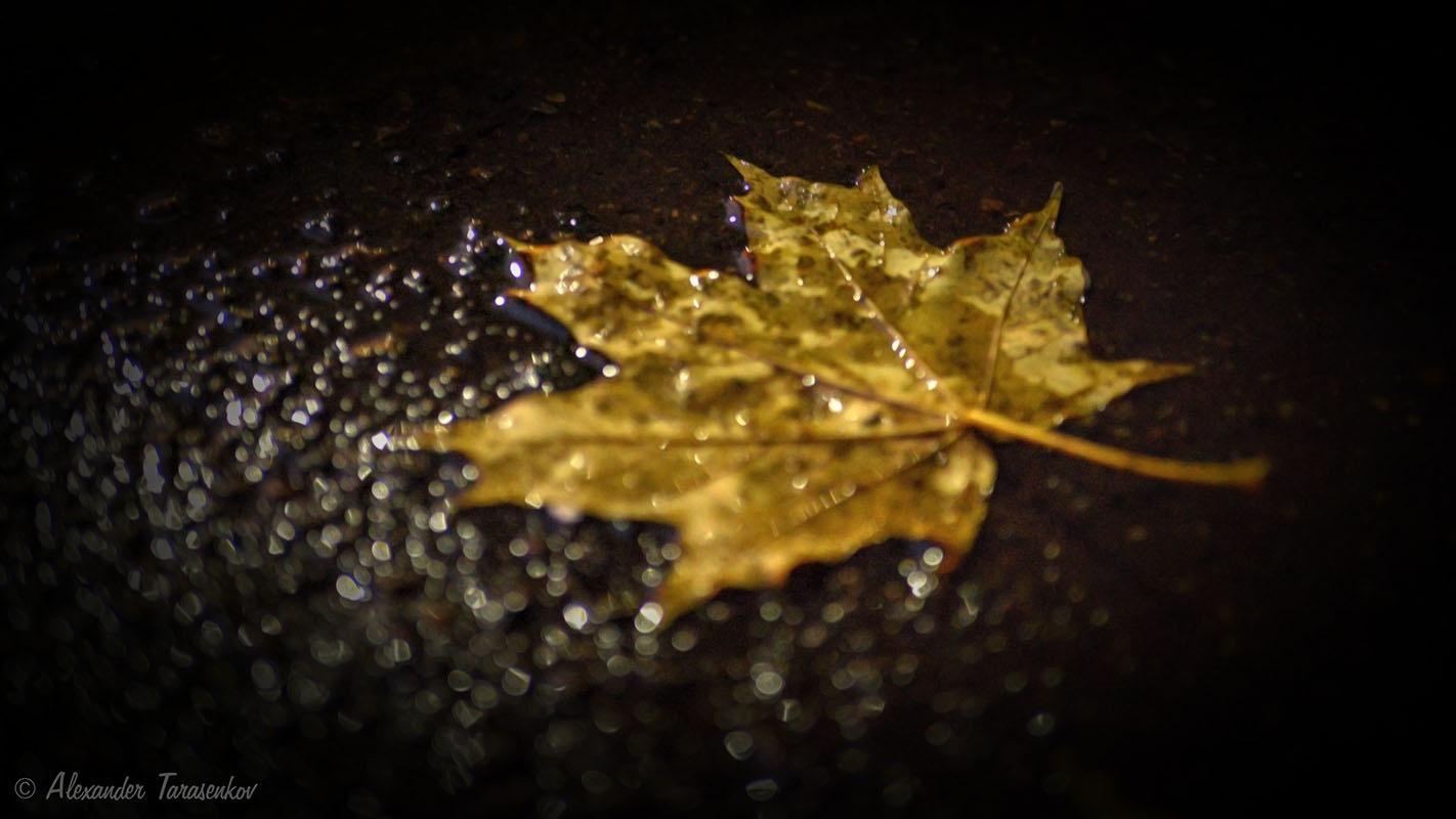 Fall, I again deprived of rest... by Alexander Tarasenkov