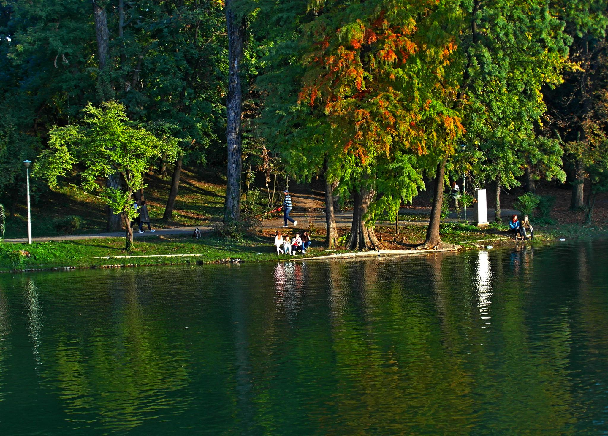 In park by staicugheorghe3