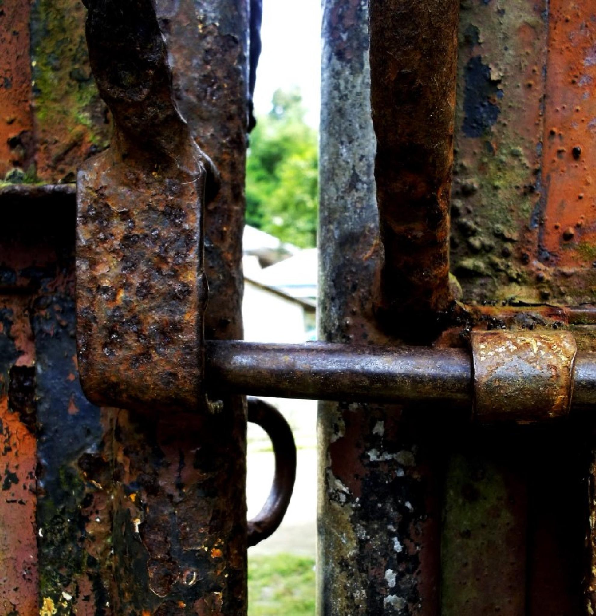 gate by adam.sastradipoera