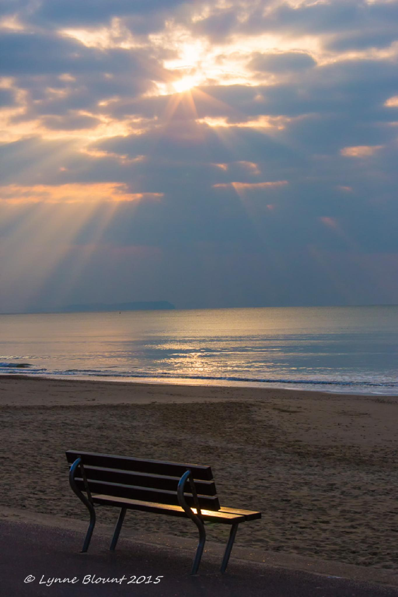 Empty Seat at Sunset by LynneB