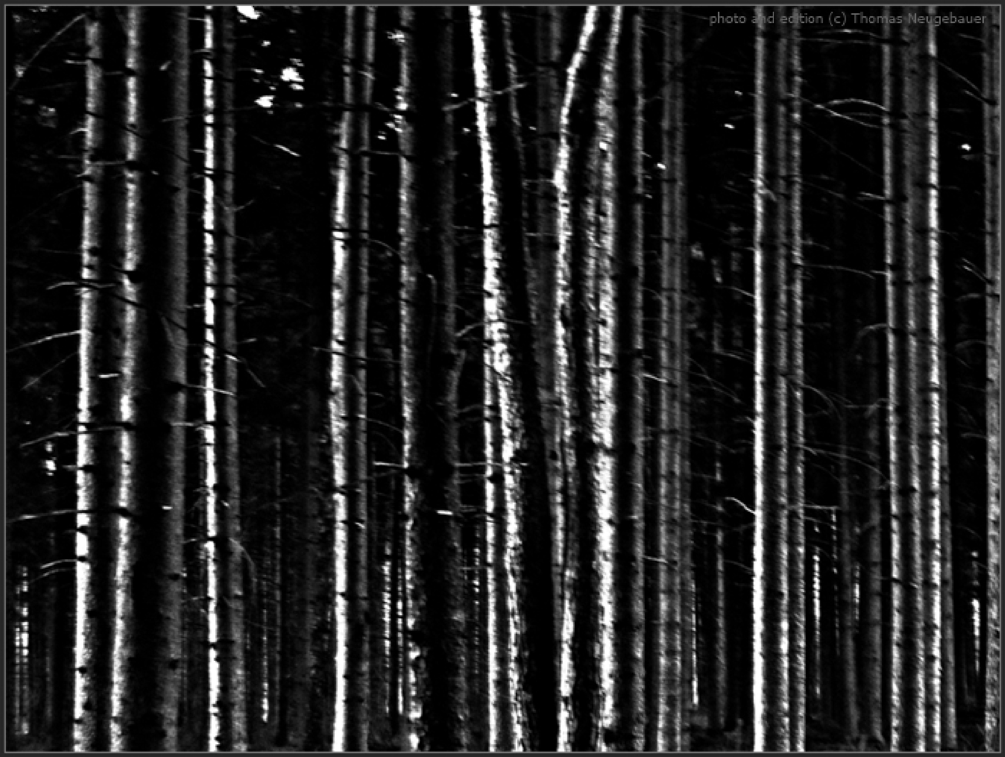 # 602 by Thomas Neugebauer