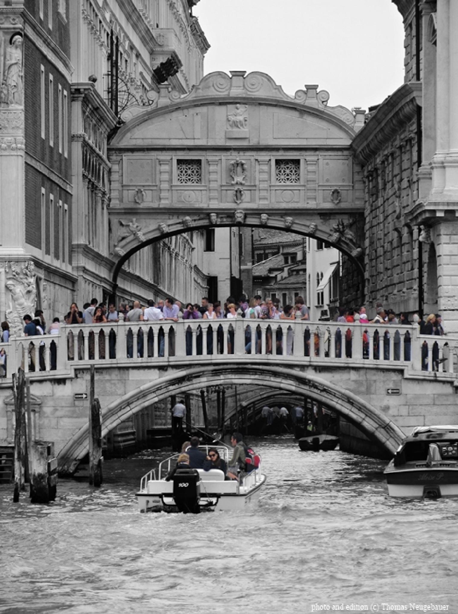 # 548 Venice by Thomas Neugebauer
