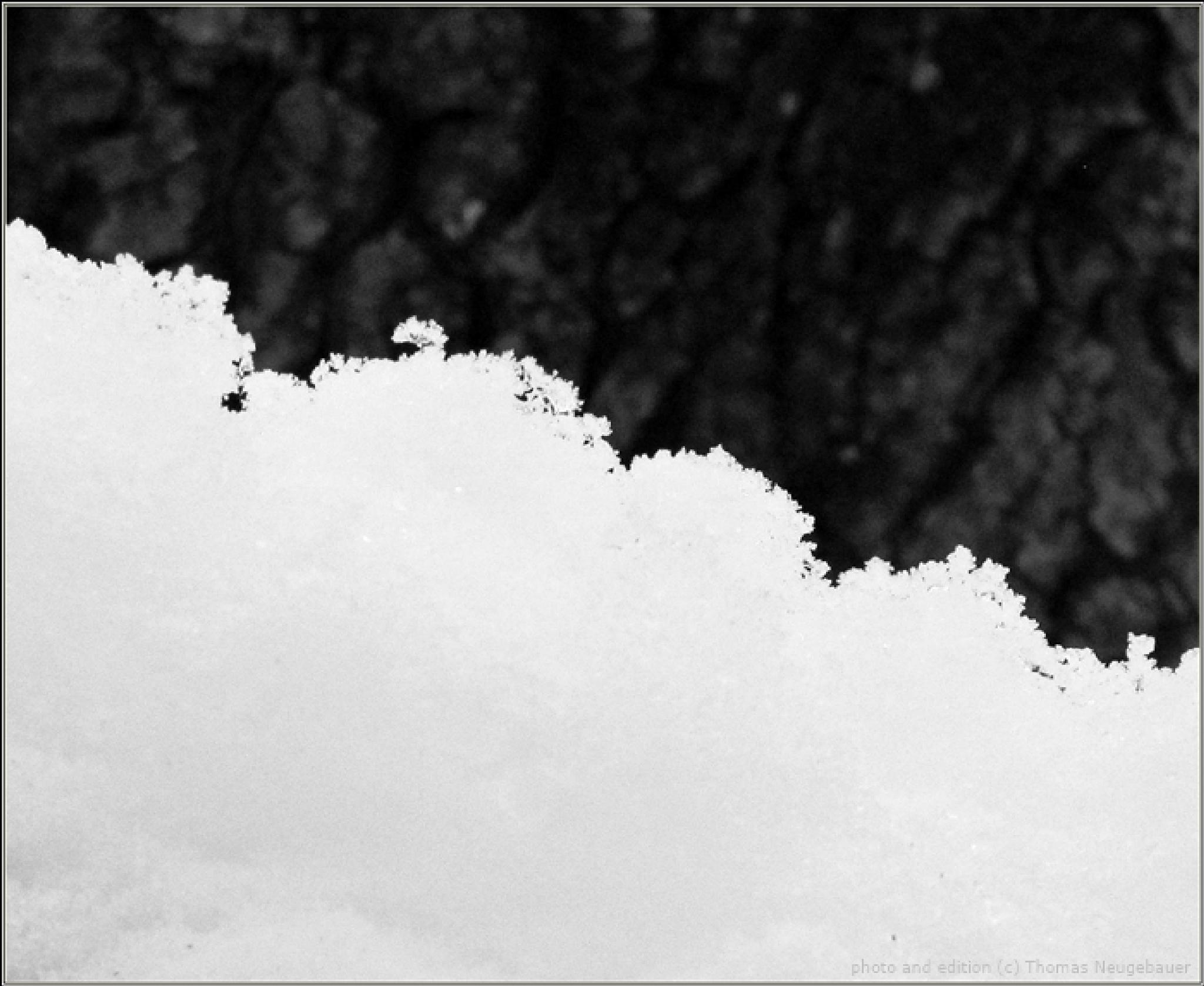 # 531 SNOW by Thomas Neugebauer