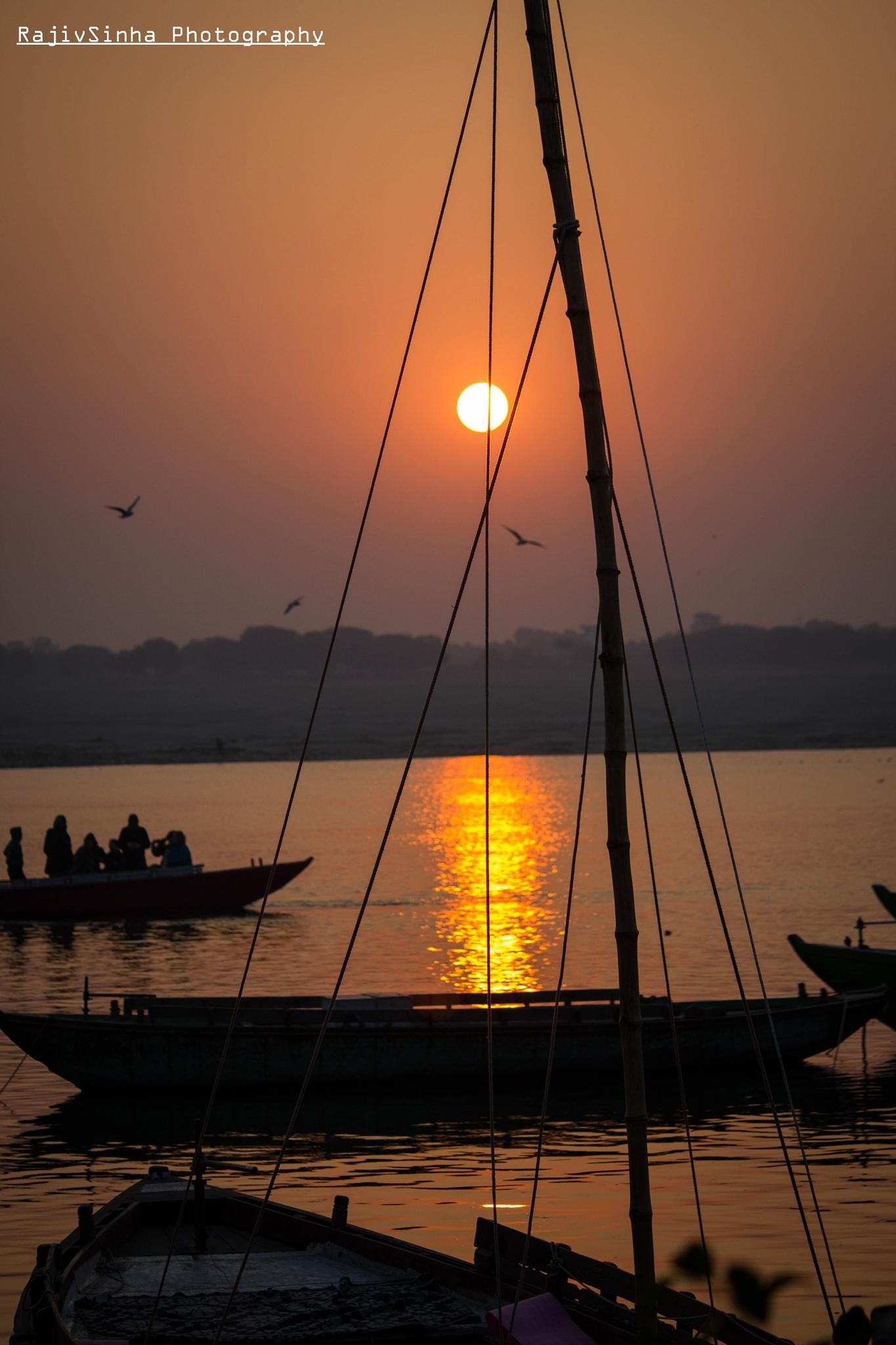 Morning sunshine by Rajiv Sinha Photography