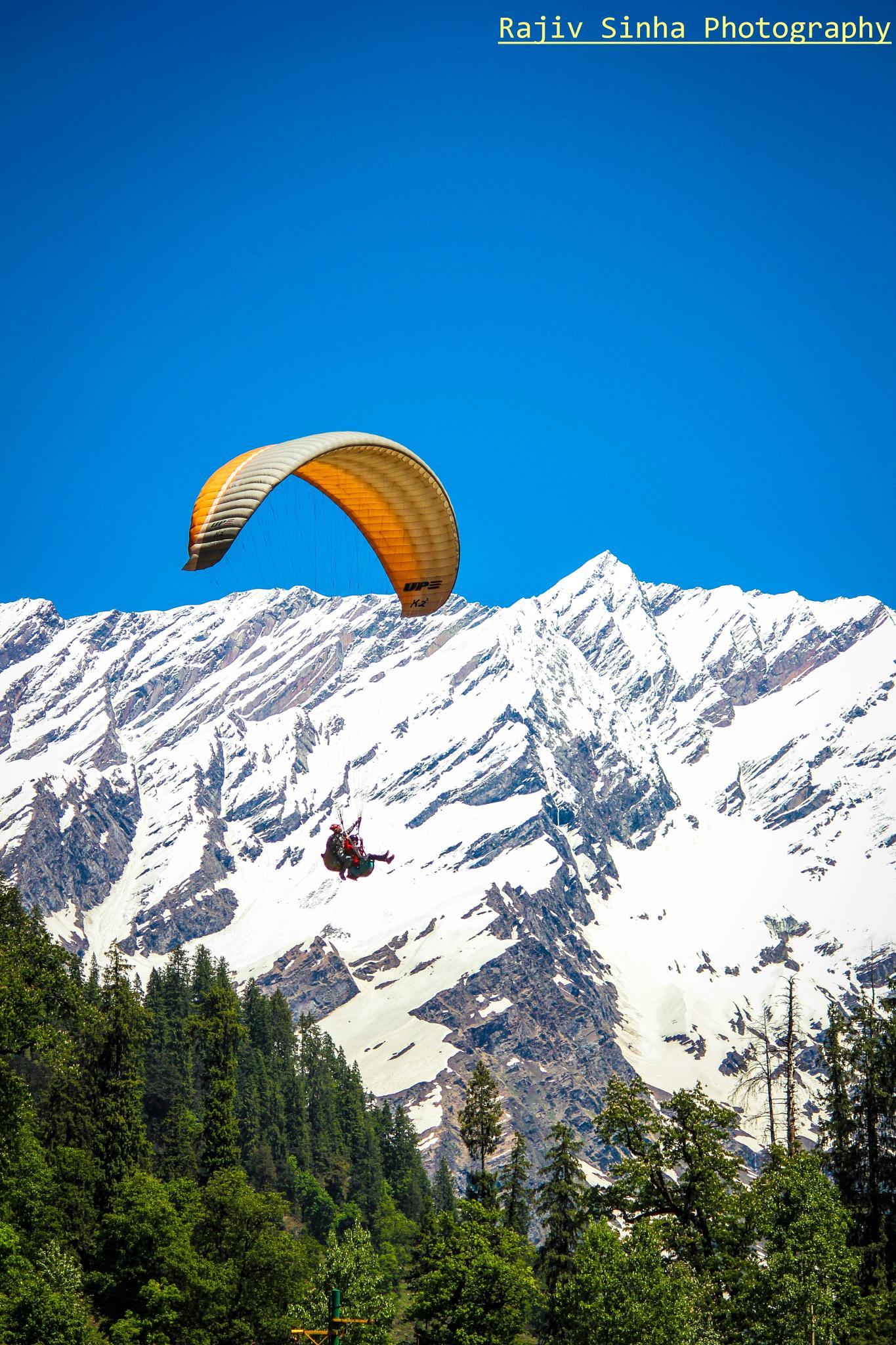 Fly High by Rajiv Sinha Photography