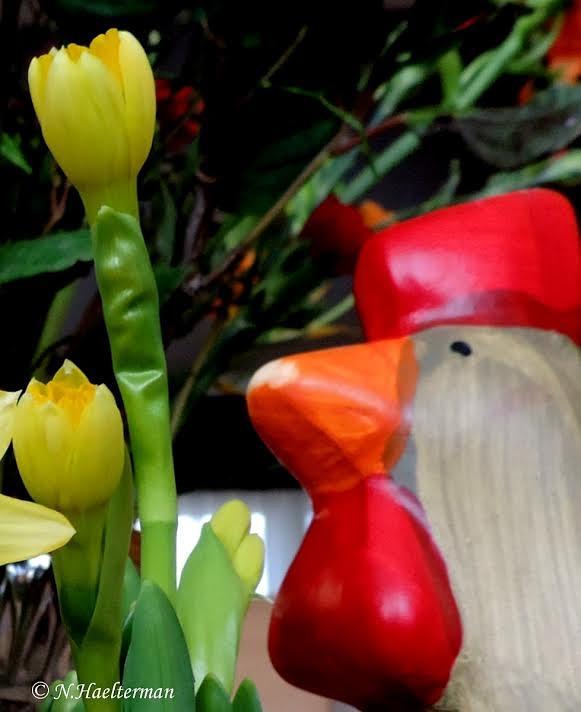 """Er was eens een """"houten kip"""" en een ontluikende narcis.. by nelly.haelterman"""