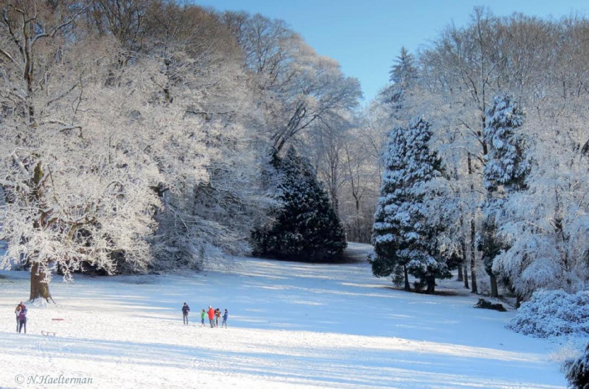 Na de herfst, komt de winter.... by nelly.haelterman