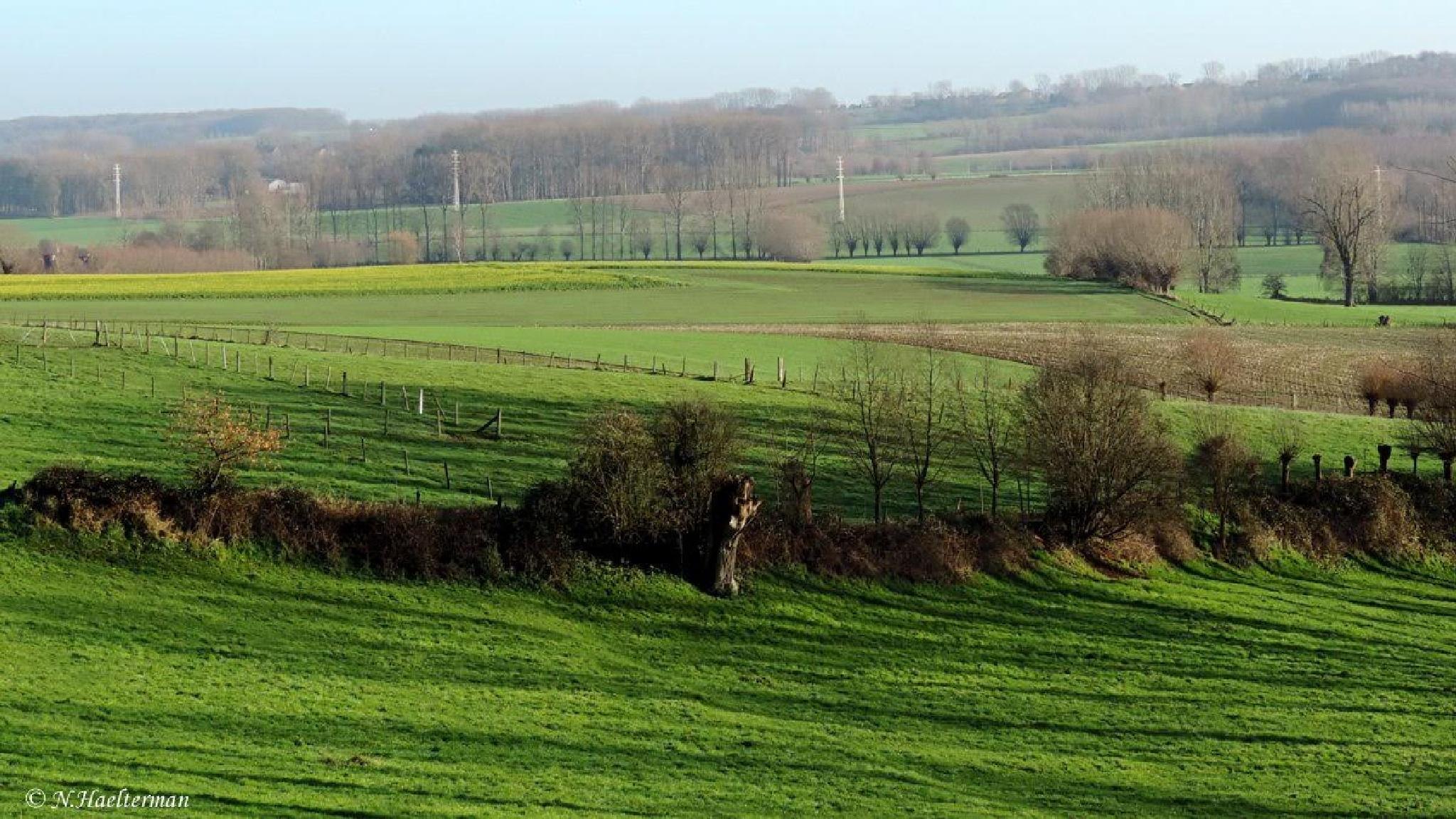Glooiend landschap by nelly.haelterman