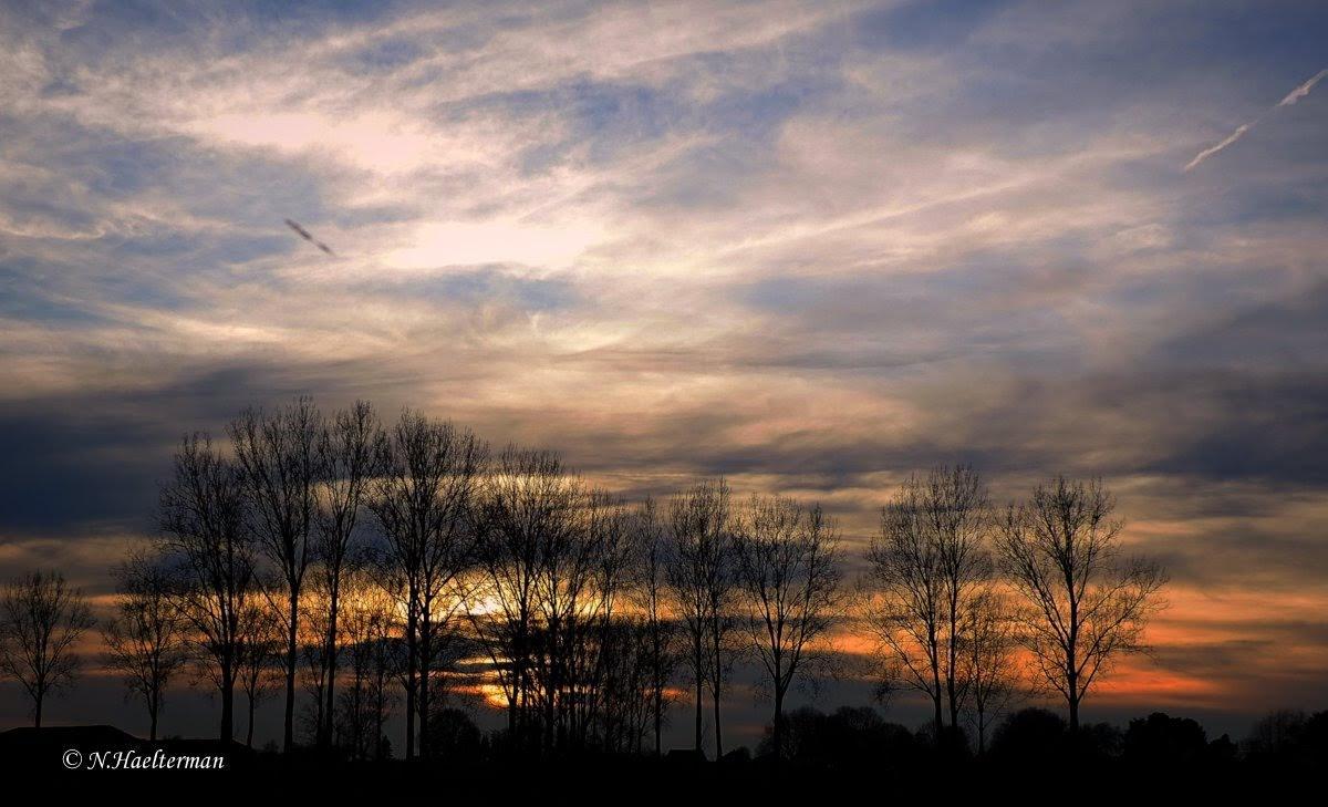 Winterlucht bij valavond by nelly.haelterman