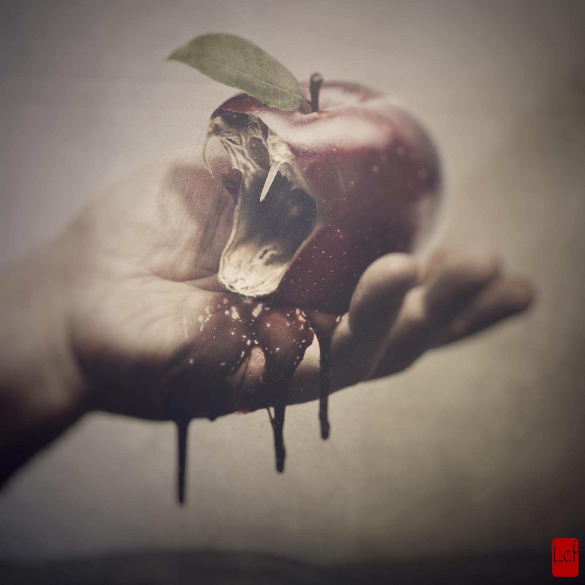 Paradise Lost by Igor Belan Boban
