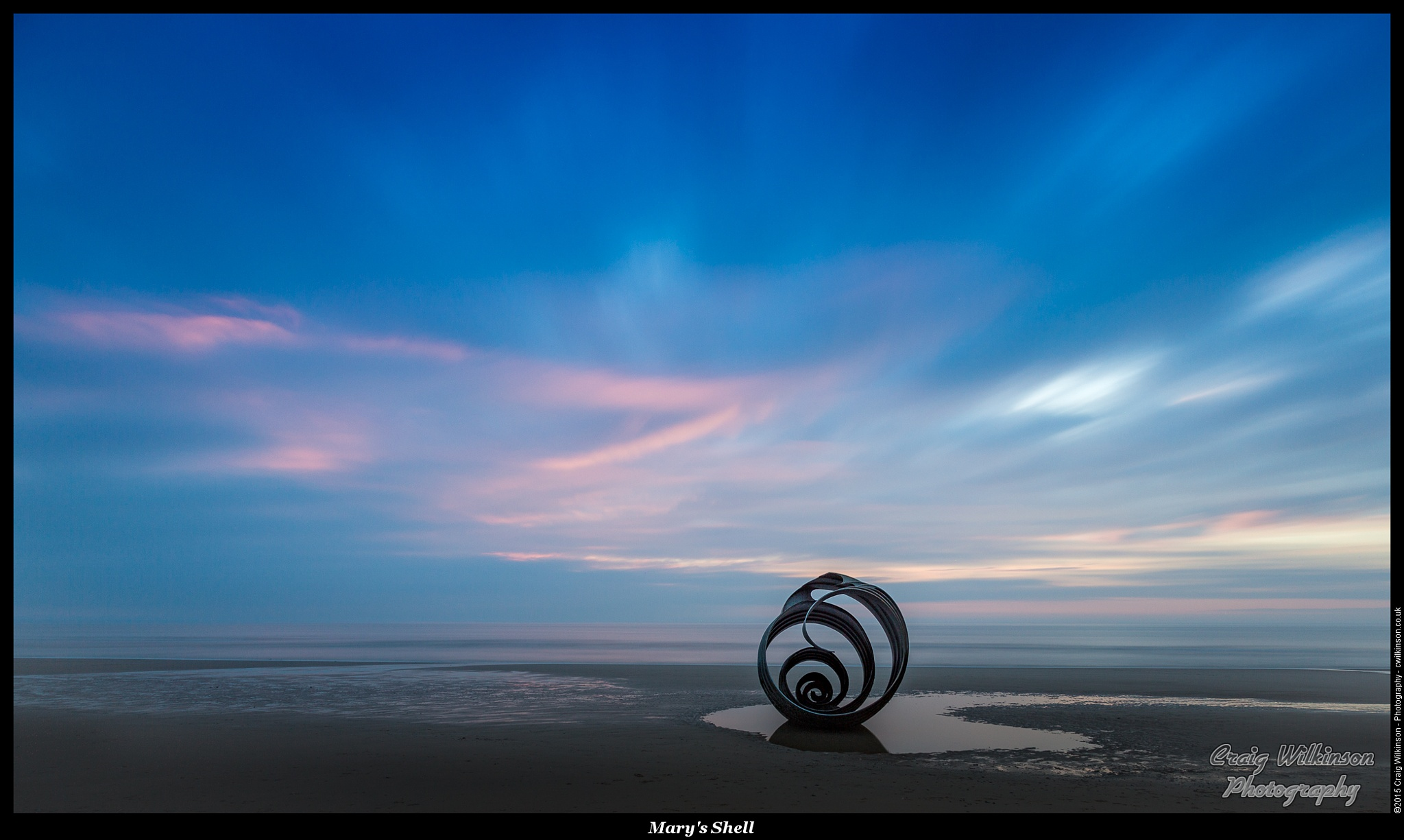 Mary's Shell by Craig Wilkinson