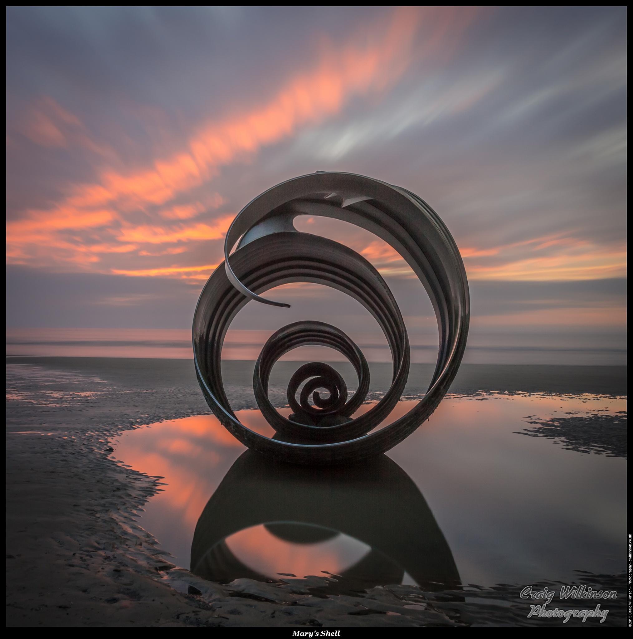 Marys' Shell #2 by Craig Wilkinson