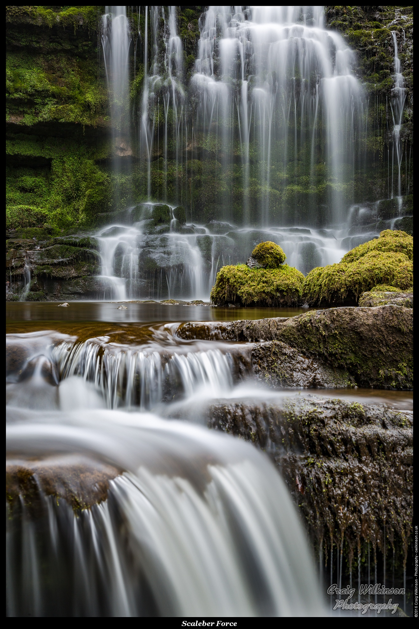 Scaleber Force by Craig Wilkinson
