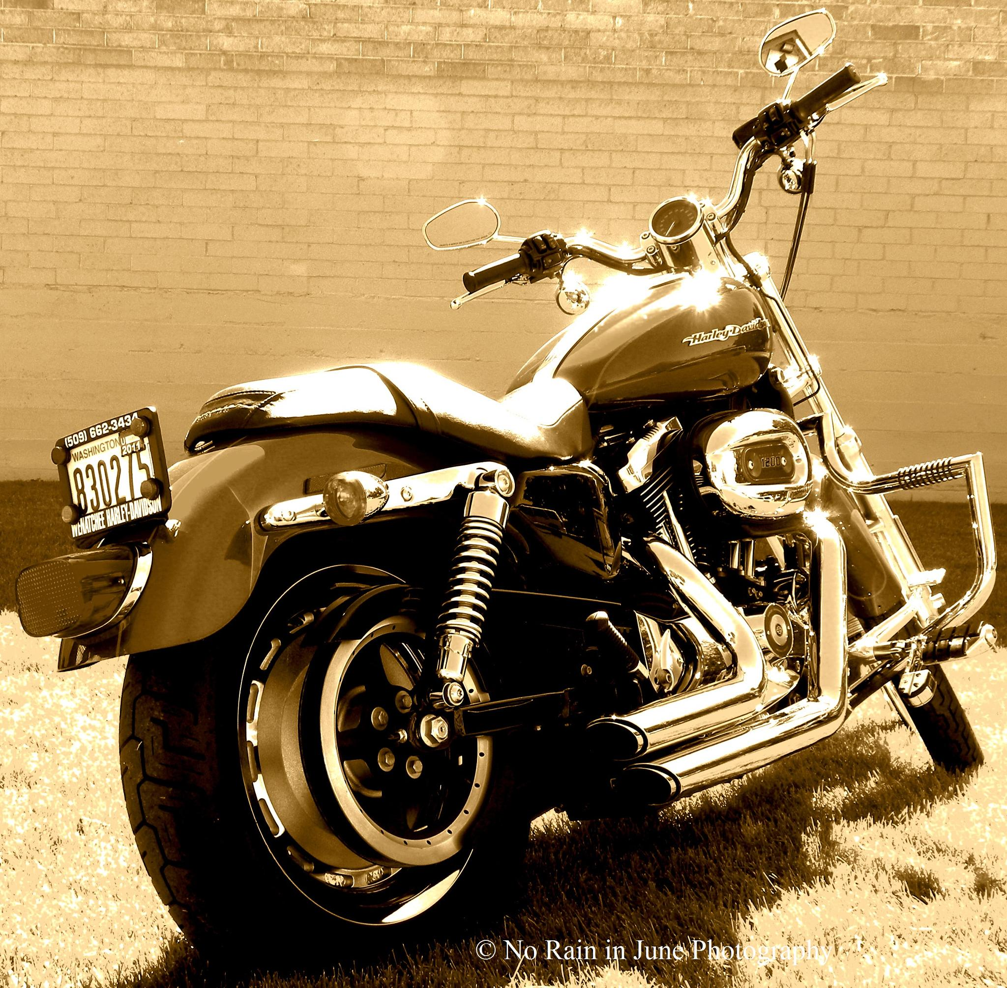 Her Harley by nicki.jennings