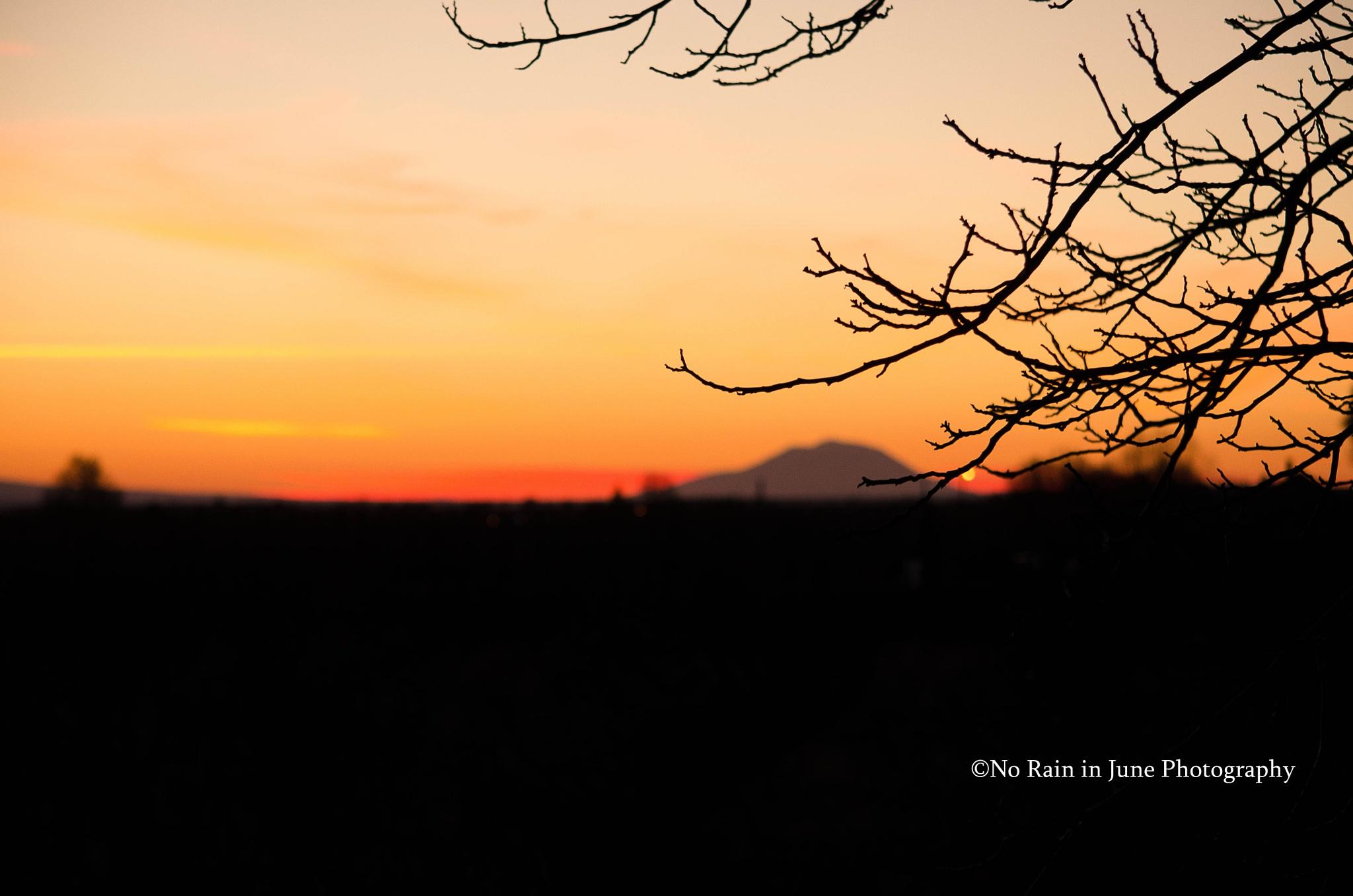 Mt Adams sunset by nicki.jennings