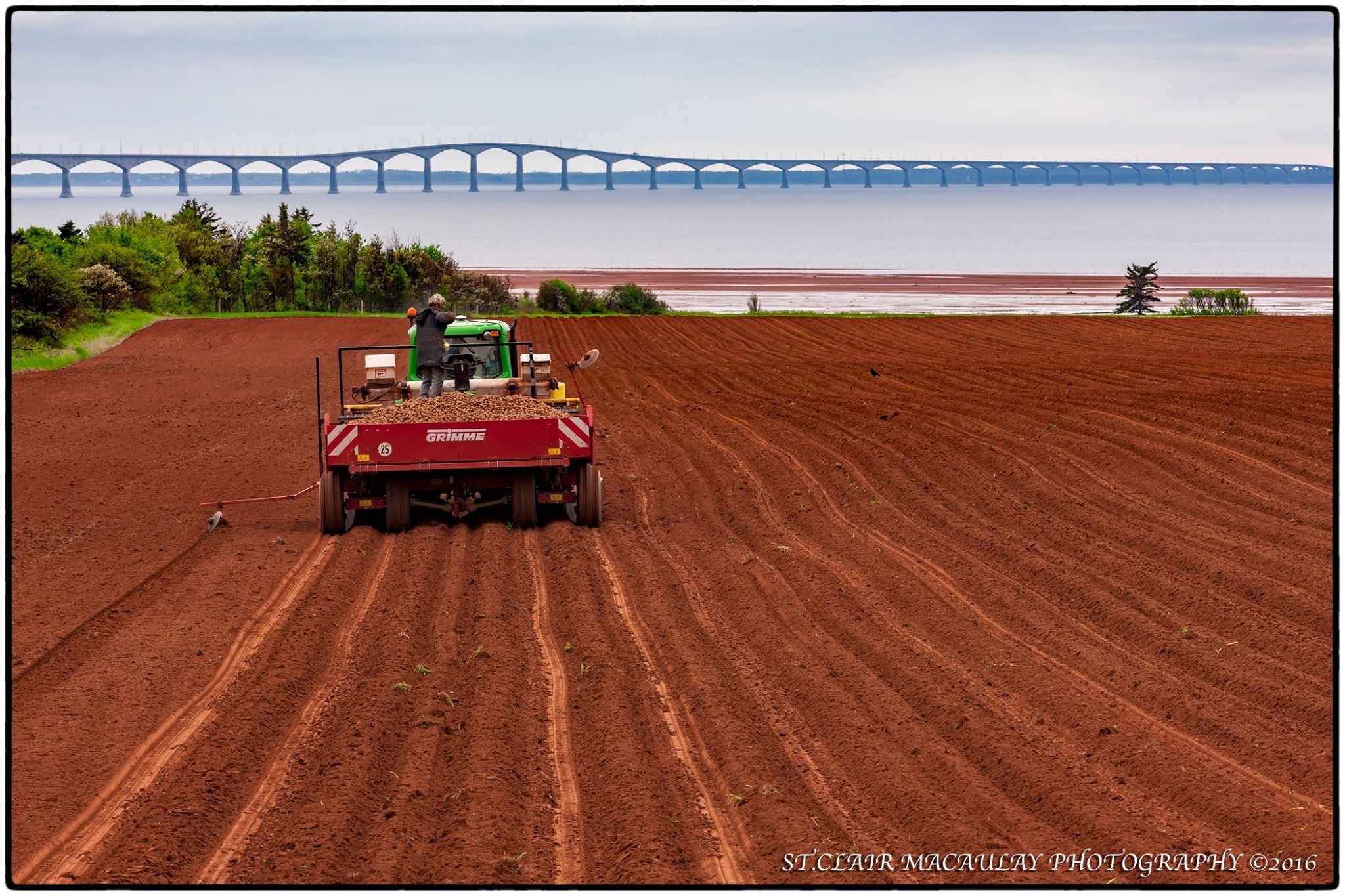 Planting time again  by stclairmac