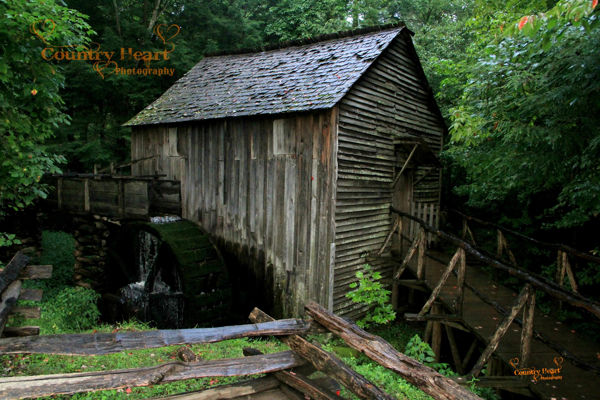 Old Water Mill by CountryHeartPhotography