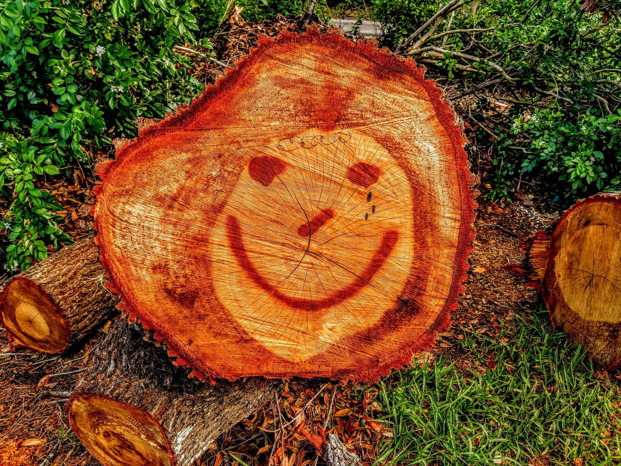 Smiley Face by Todd