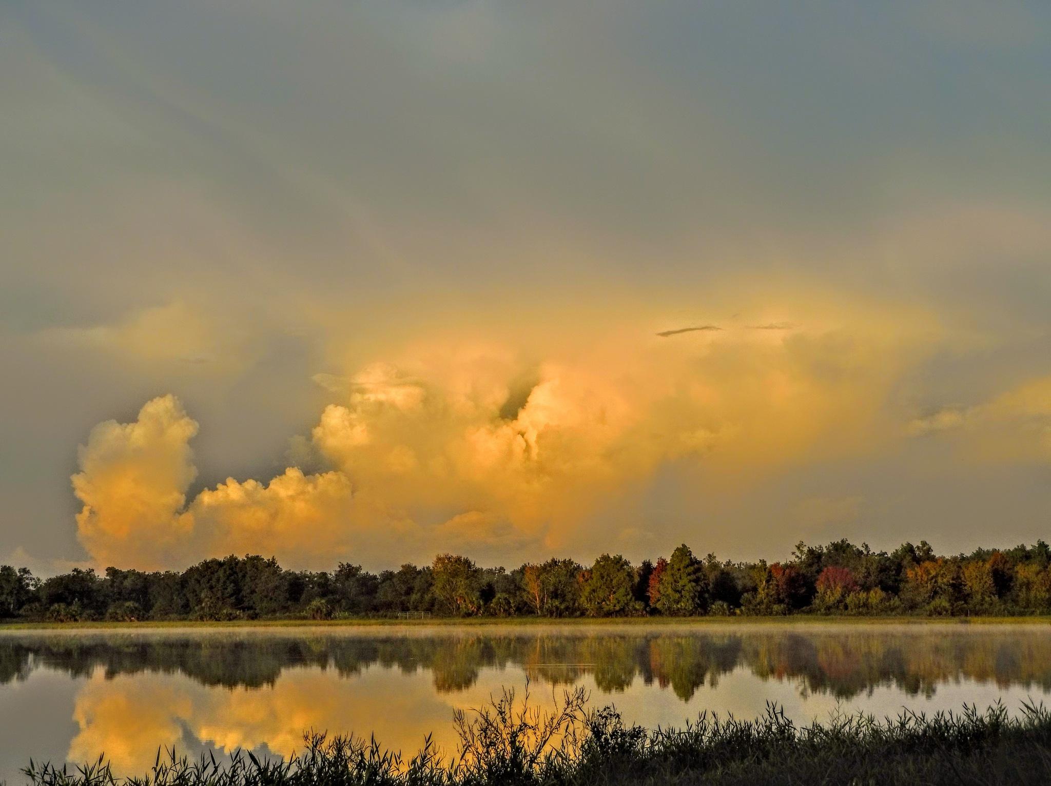 Cloud Vapor by Todd