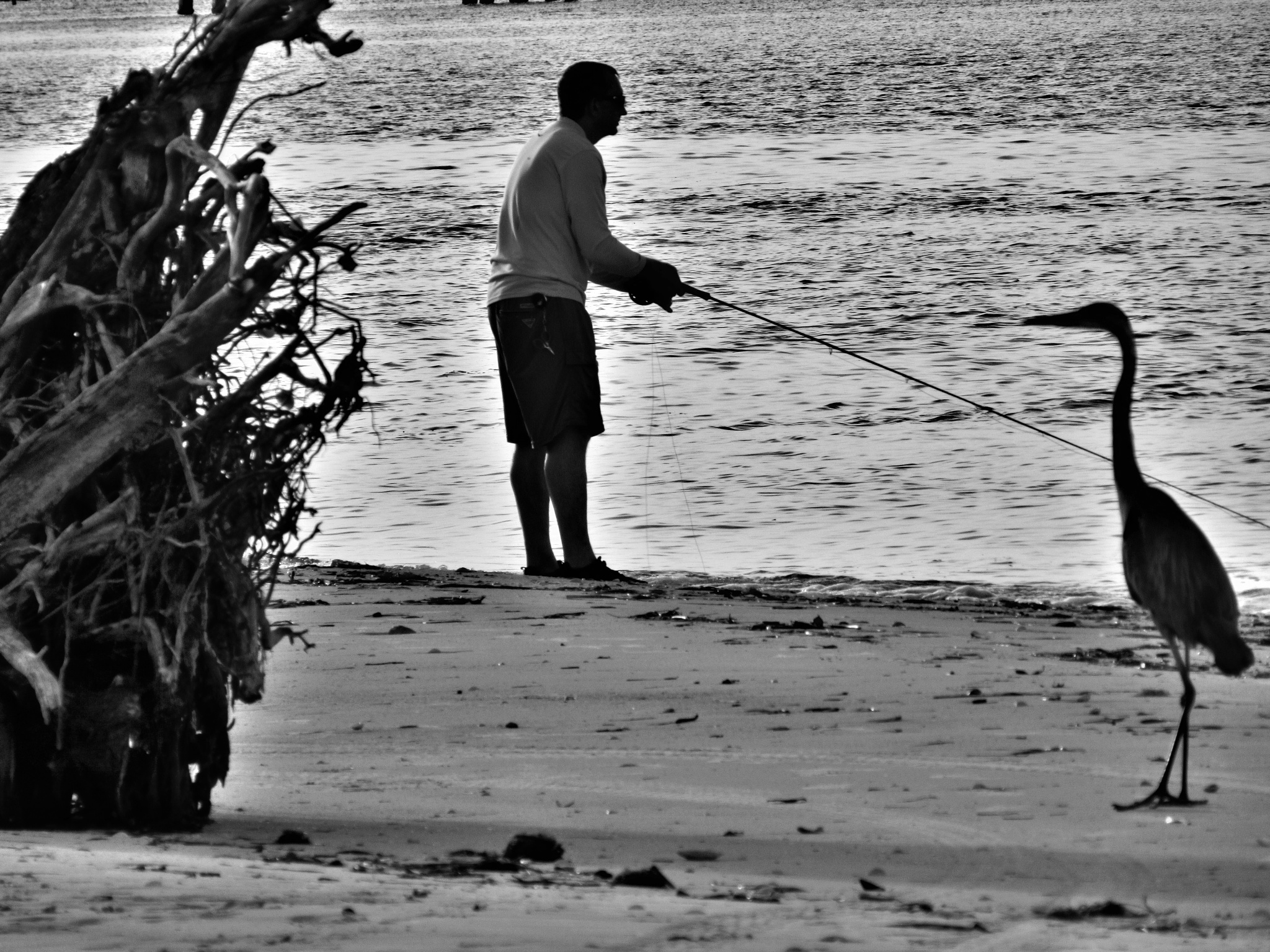 Fly Fishermen by Todd