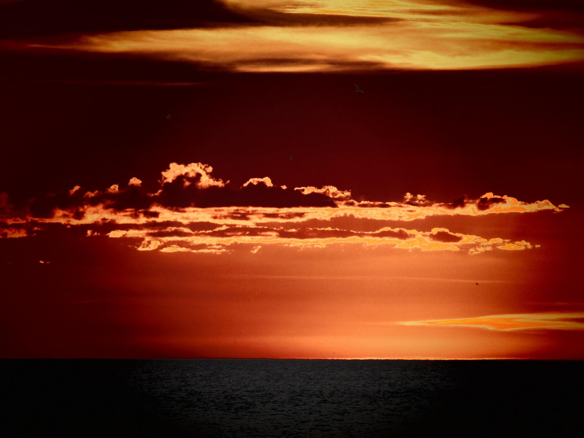Horizon by Todd
