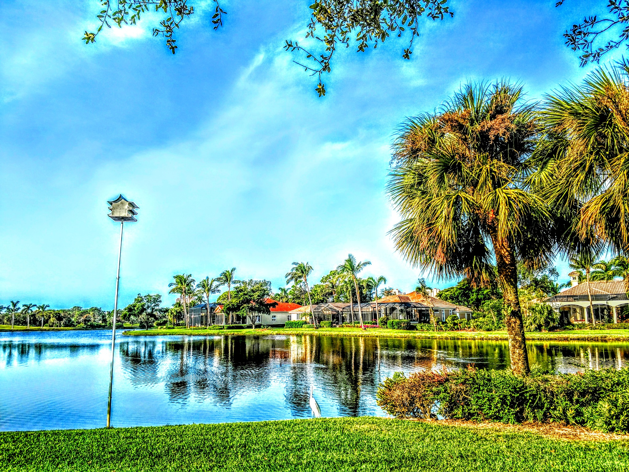 Florida Returns by Todd