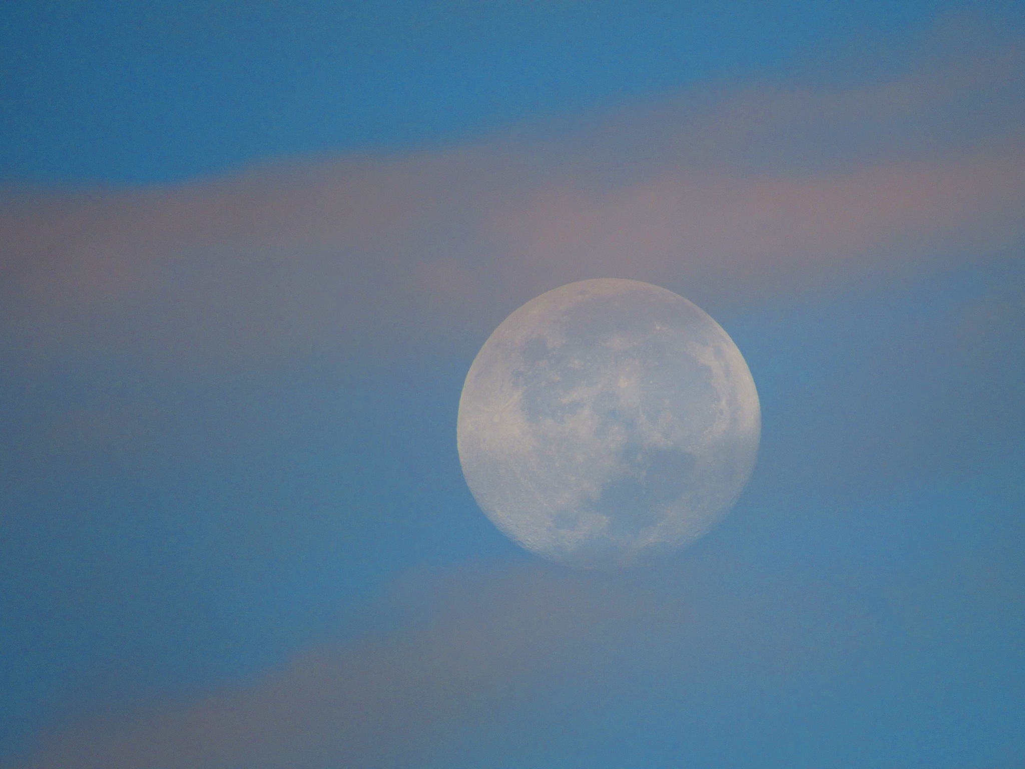 Veiled Moon by Todd