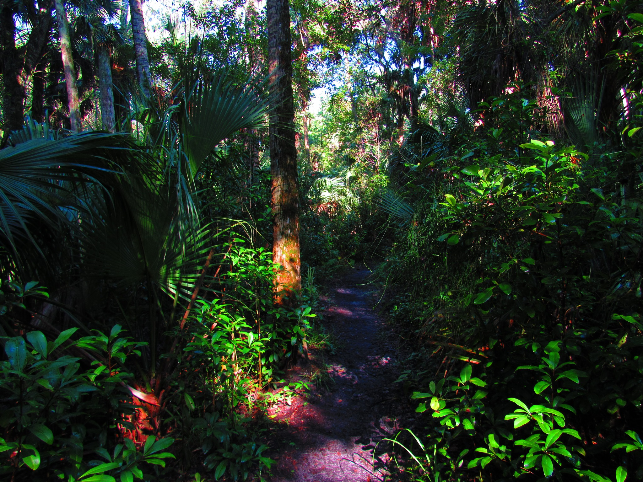 Nature Trail Extreme by Todd