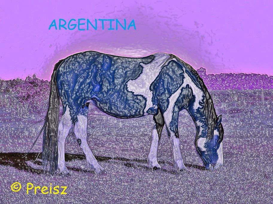 TOBIANA EN AZUL by carlososcar.preisz
