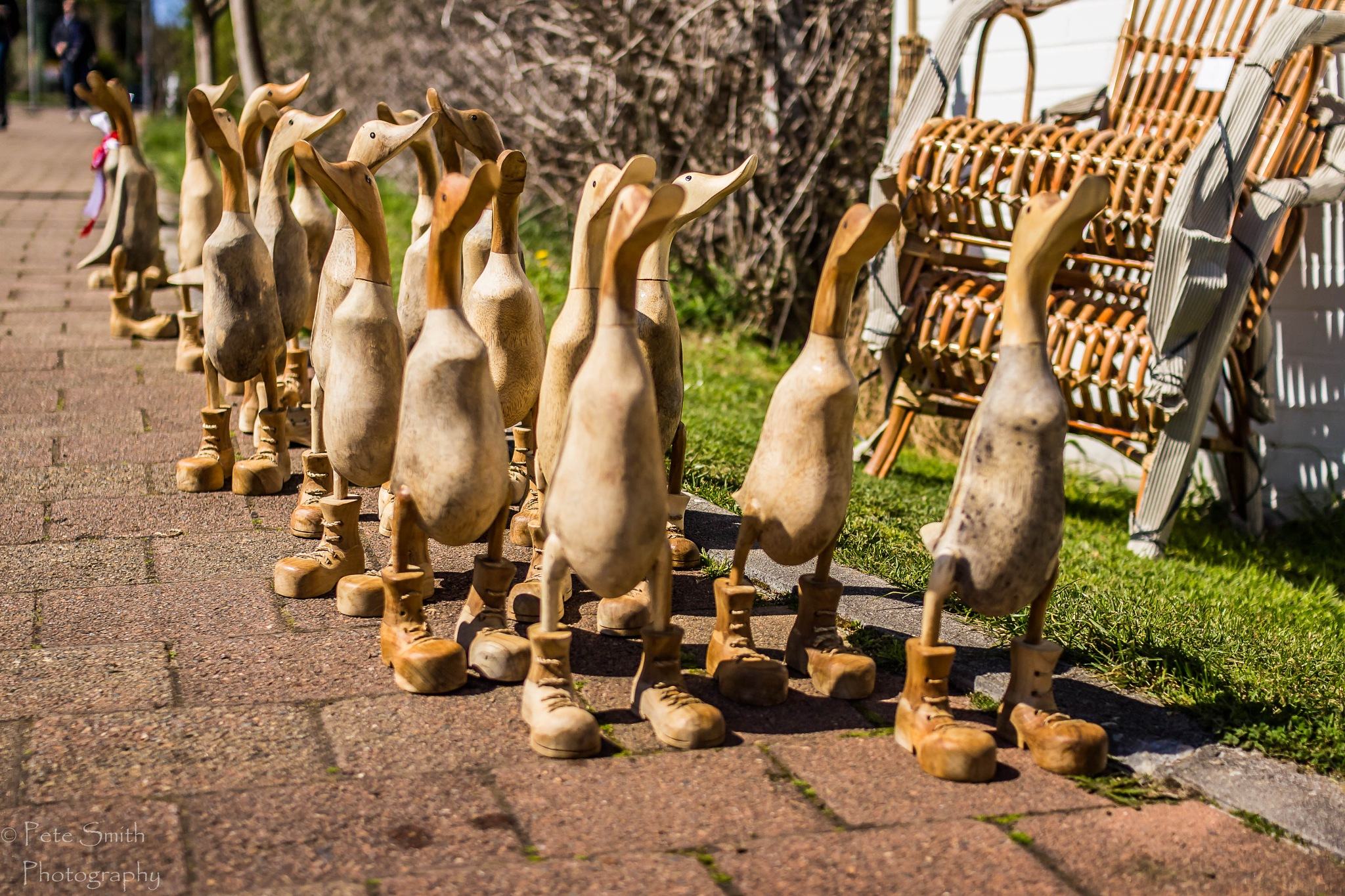 Duck in Boots! by petersmith1951